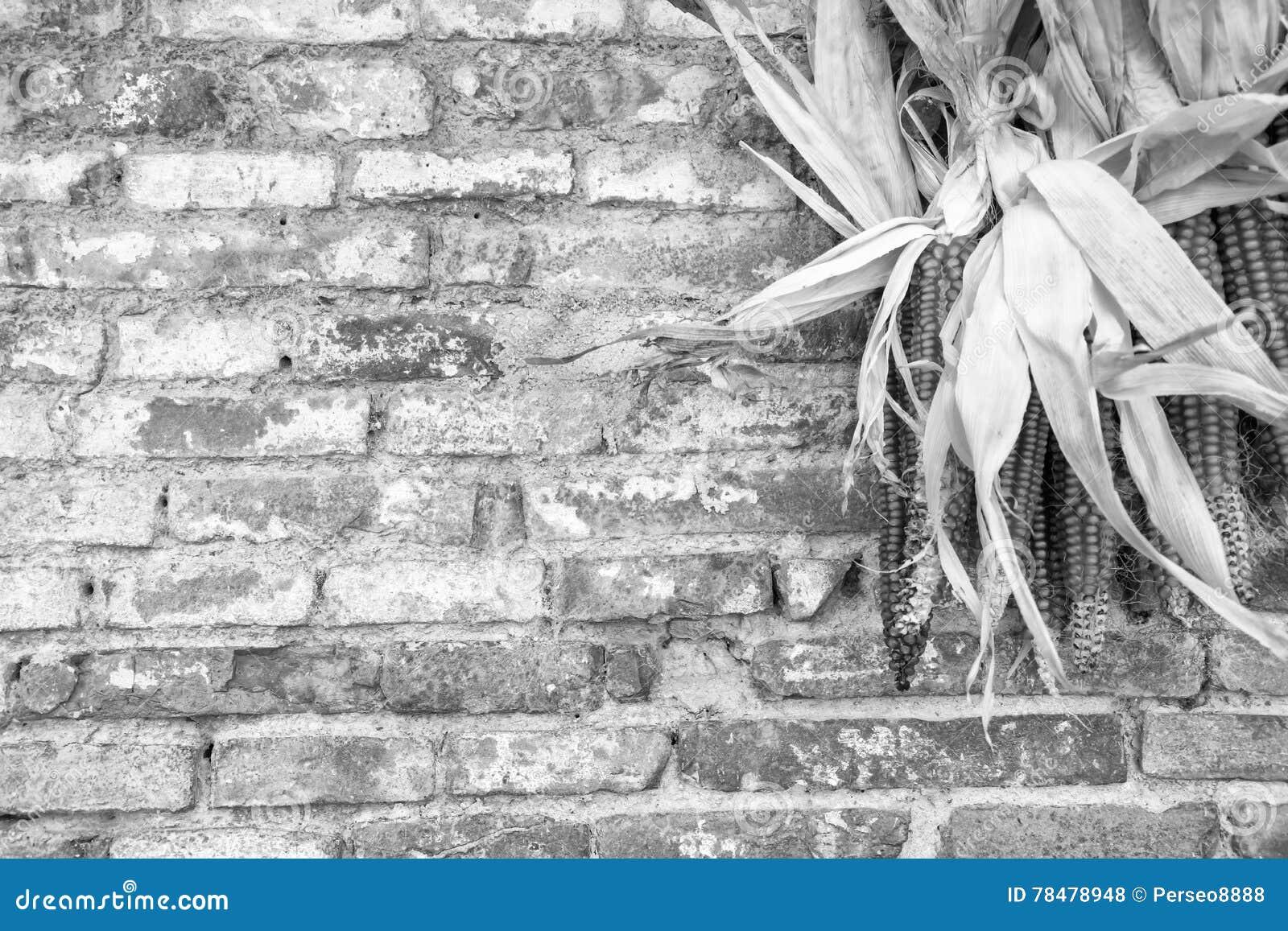 Pareti Con Foto In Bianco E Nero : Tema rustico del paese dettaglio della parete del brik con le