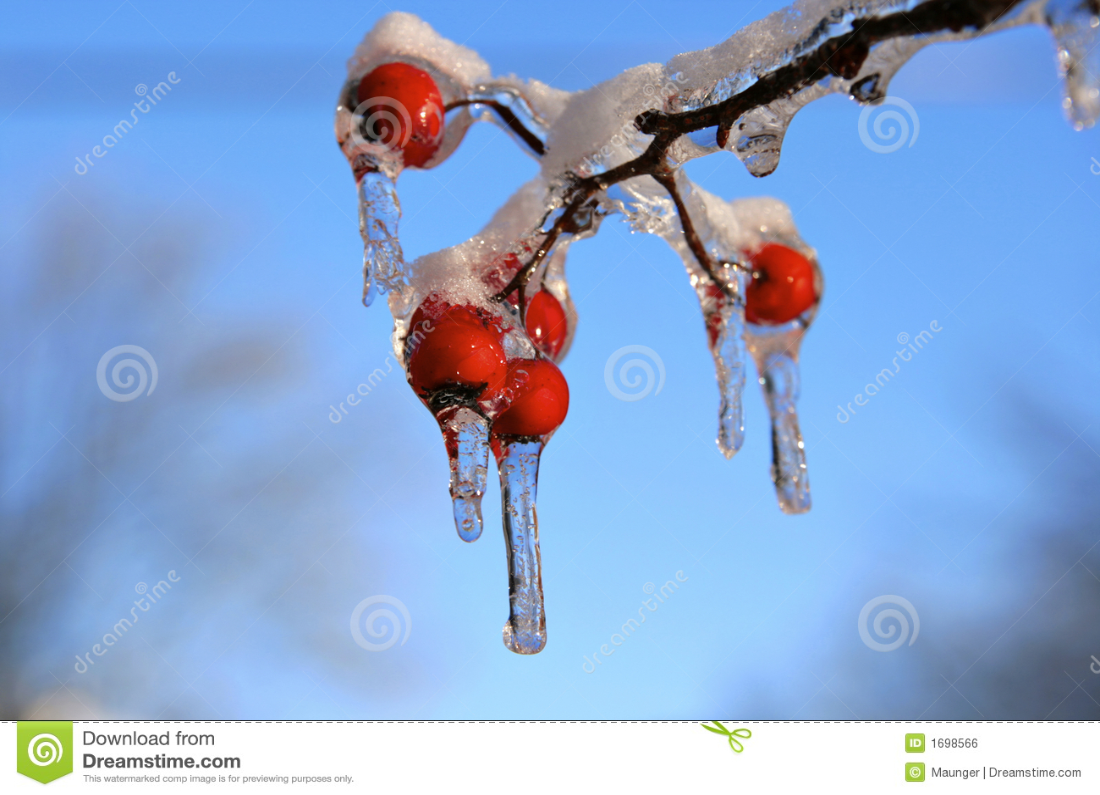 Tempête de neige et de glace