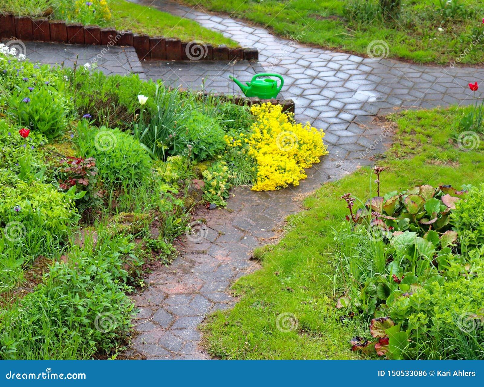 Tempête de pluie de ressort dans un jardin en Allemagne