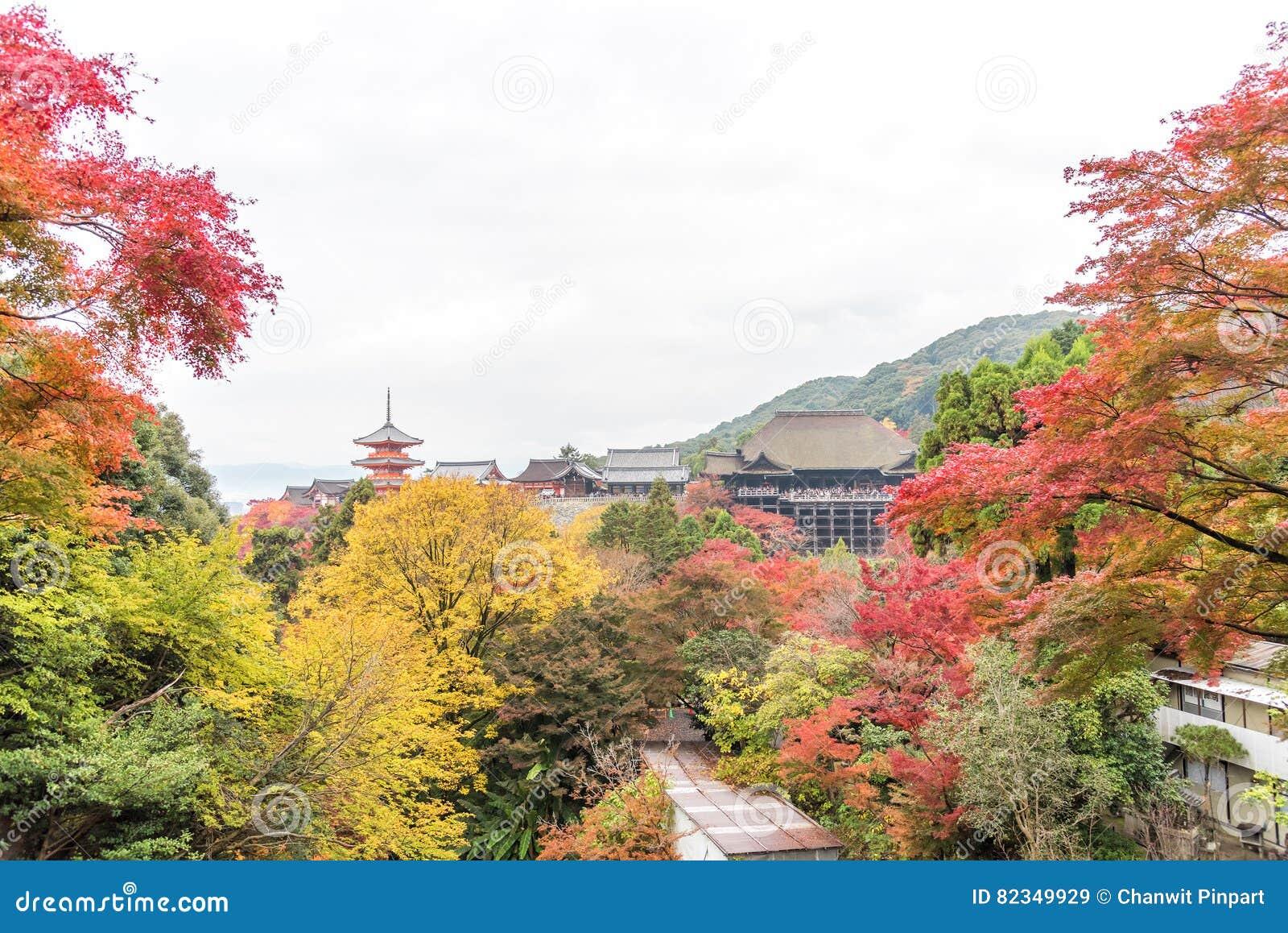 Tempel Kiyomizu oder Kiyomizu-dera in autum Jahreszeit in Kyoto, Japan