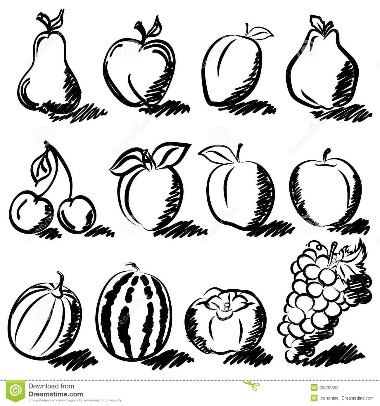 Temperate Fruits Sketch Drawing Set Stock Photos Image