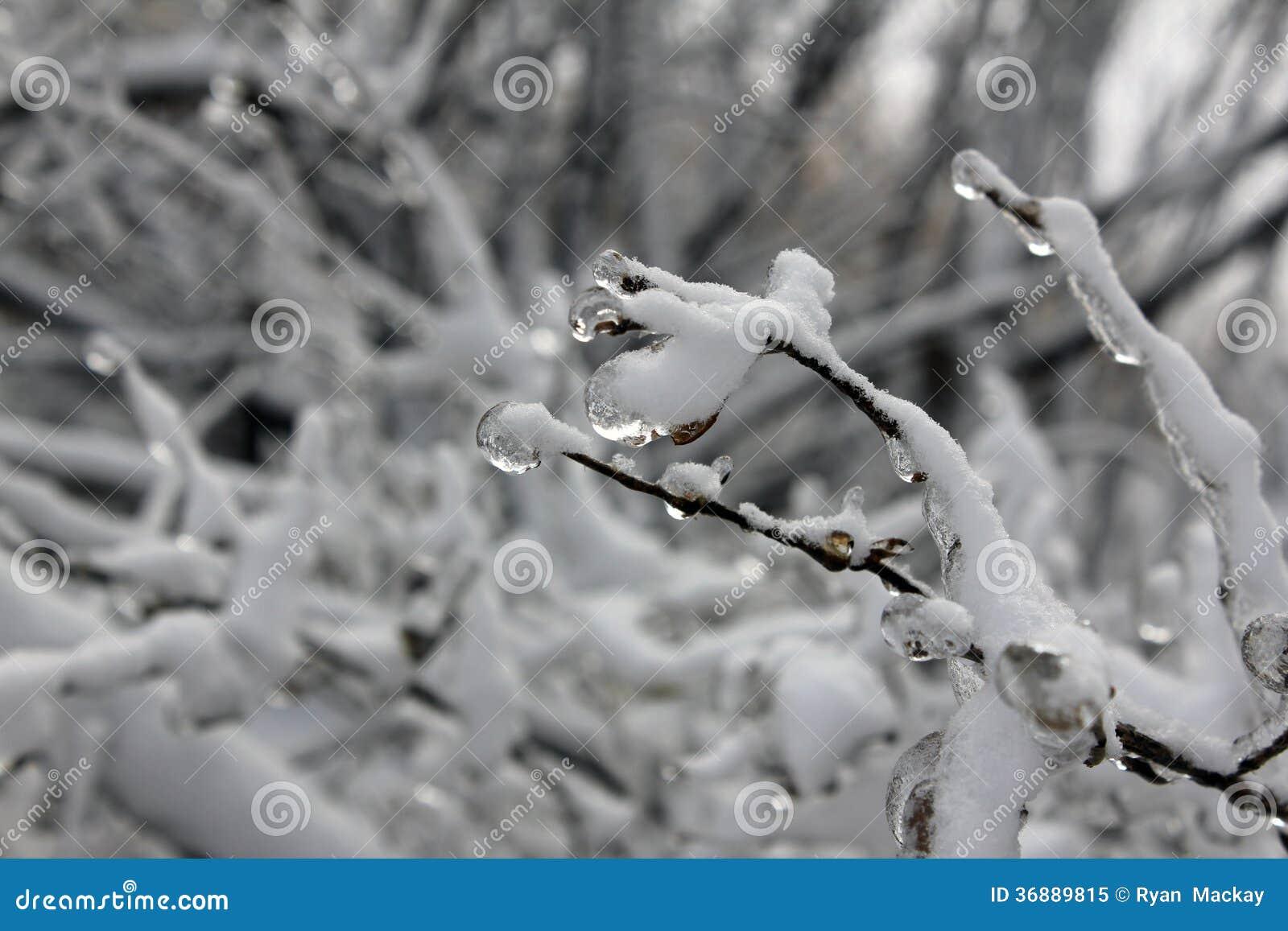 Download Tempesta di ghiaccio immagine stock. Immagine di tempo - 36889815