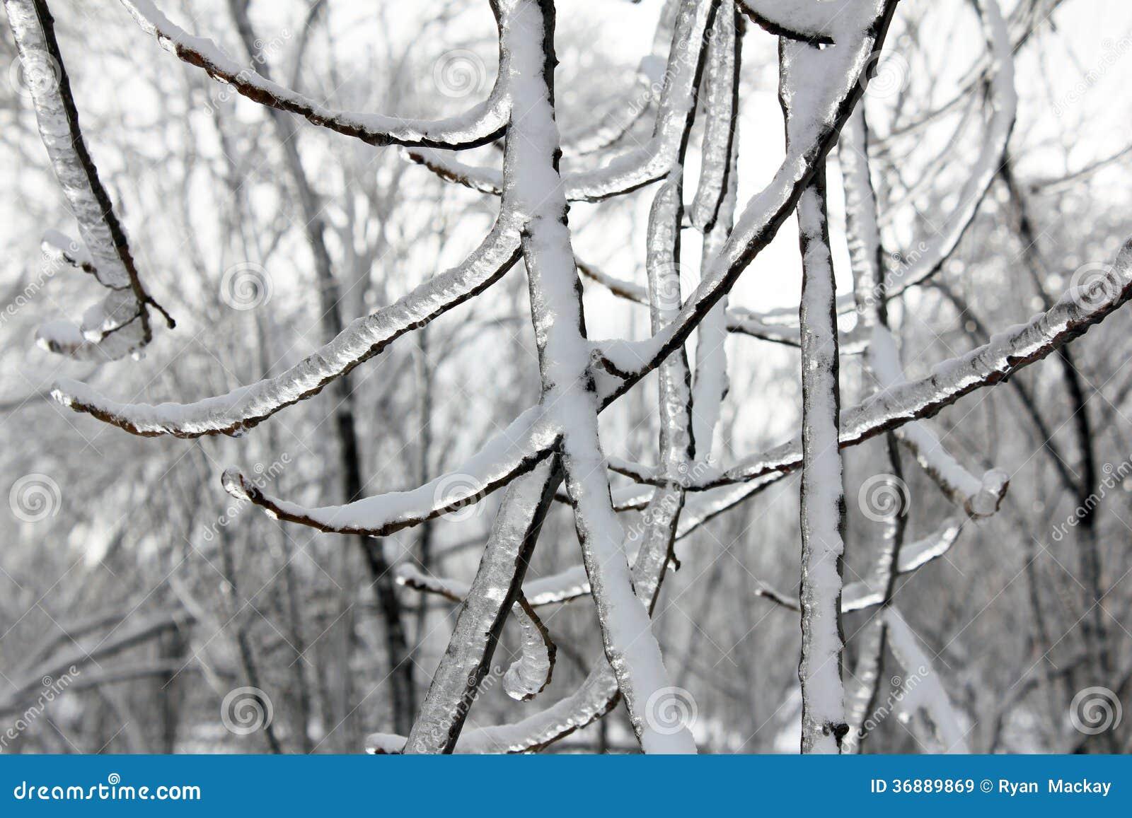 Download Tempesta di ghiaccio immagine stock. Immagine di coperto - 36889869