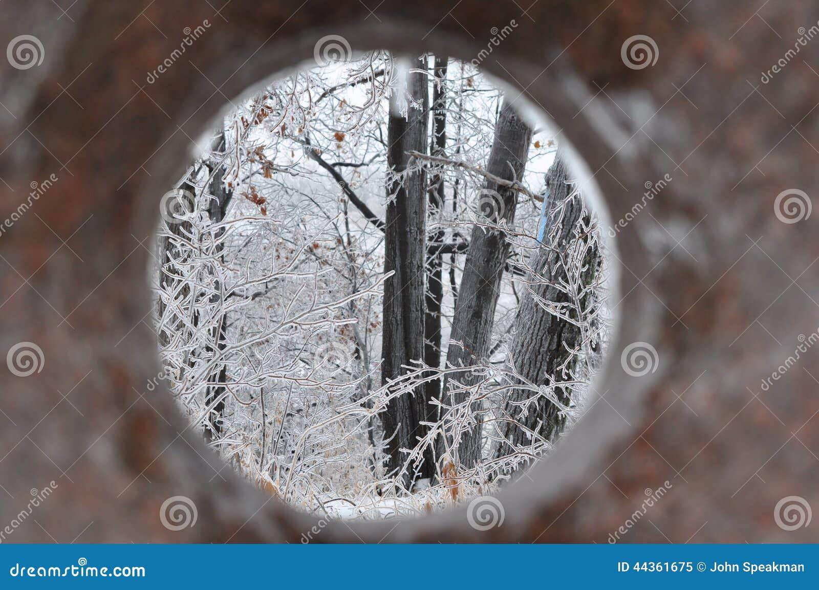 Tempesta di ghiaccio del sud di Ontario - dicembre 22, 2013