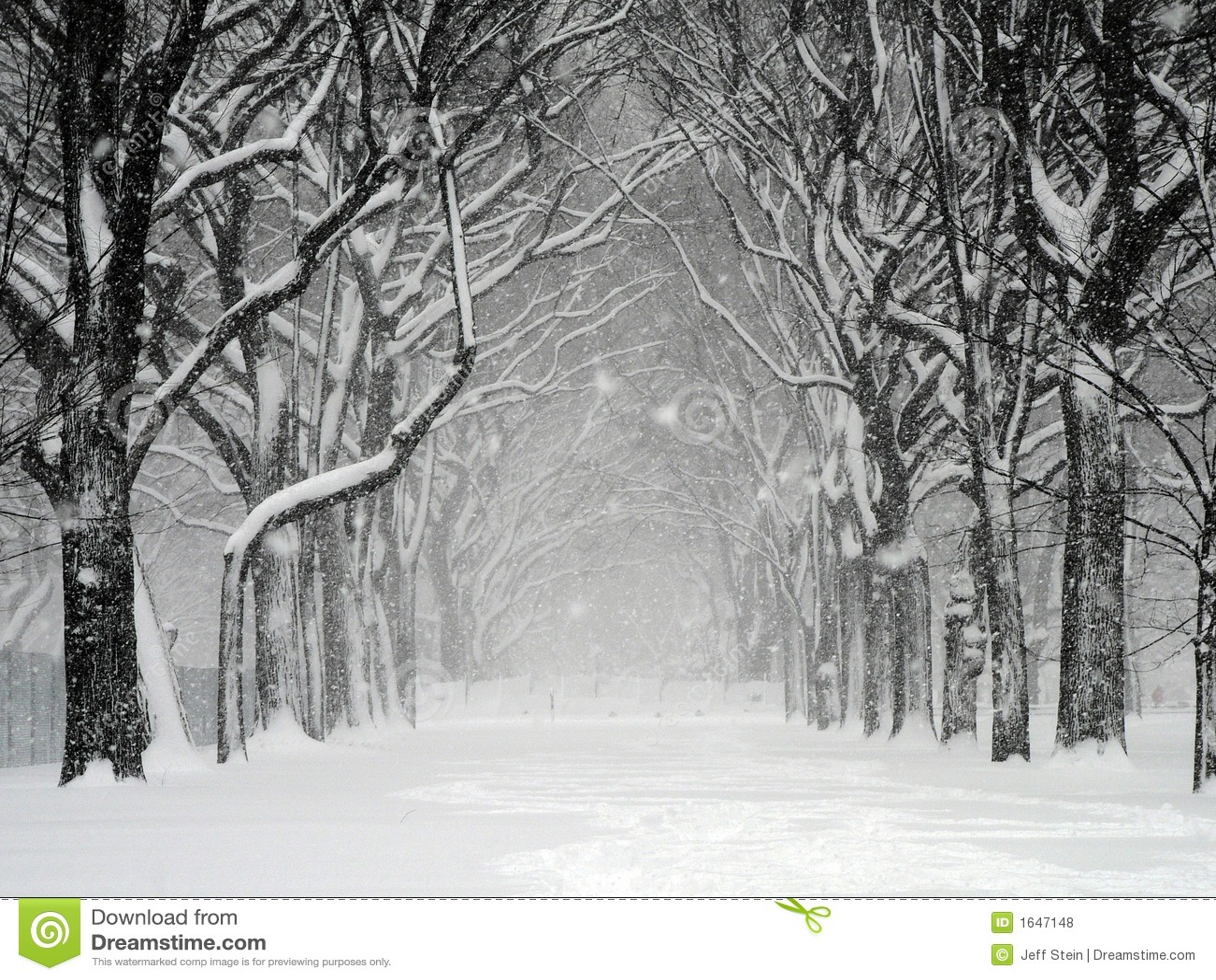 Tempestad de nieve de Central Park
