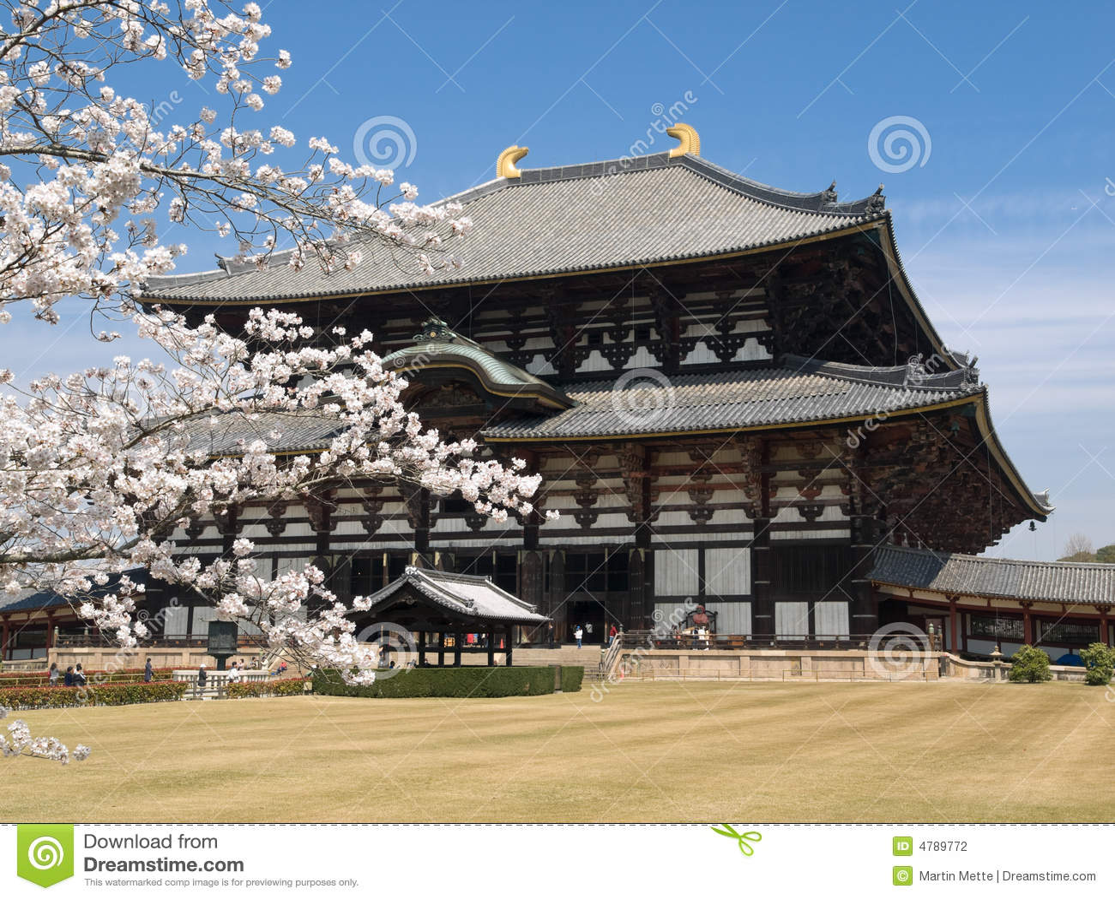 Tempiale di Nara Todaiji