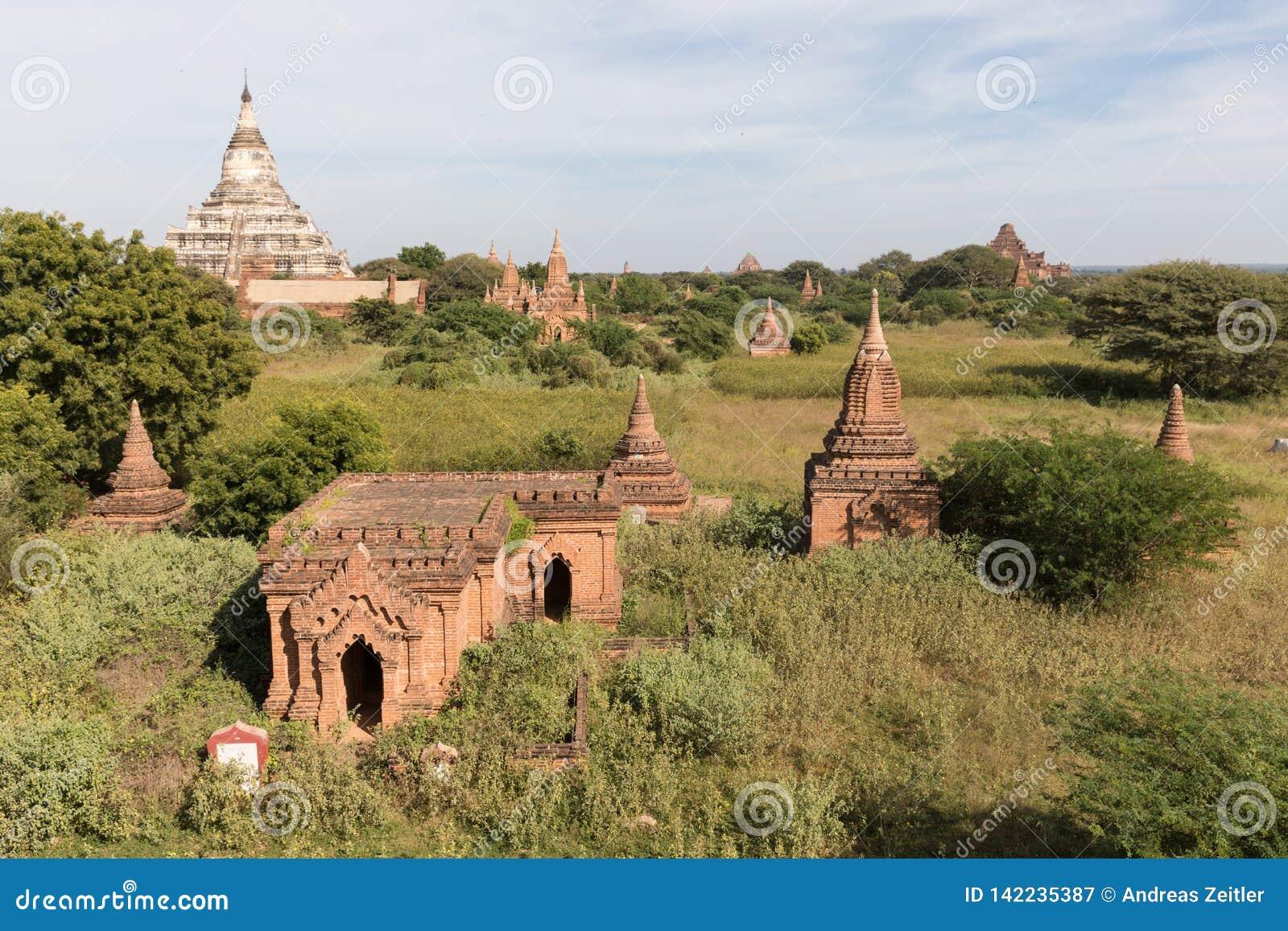 Tempie antiche di Buddha in Bagan, Myanmar (Birmania