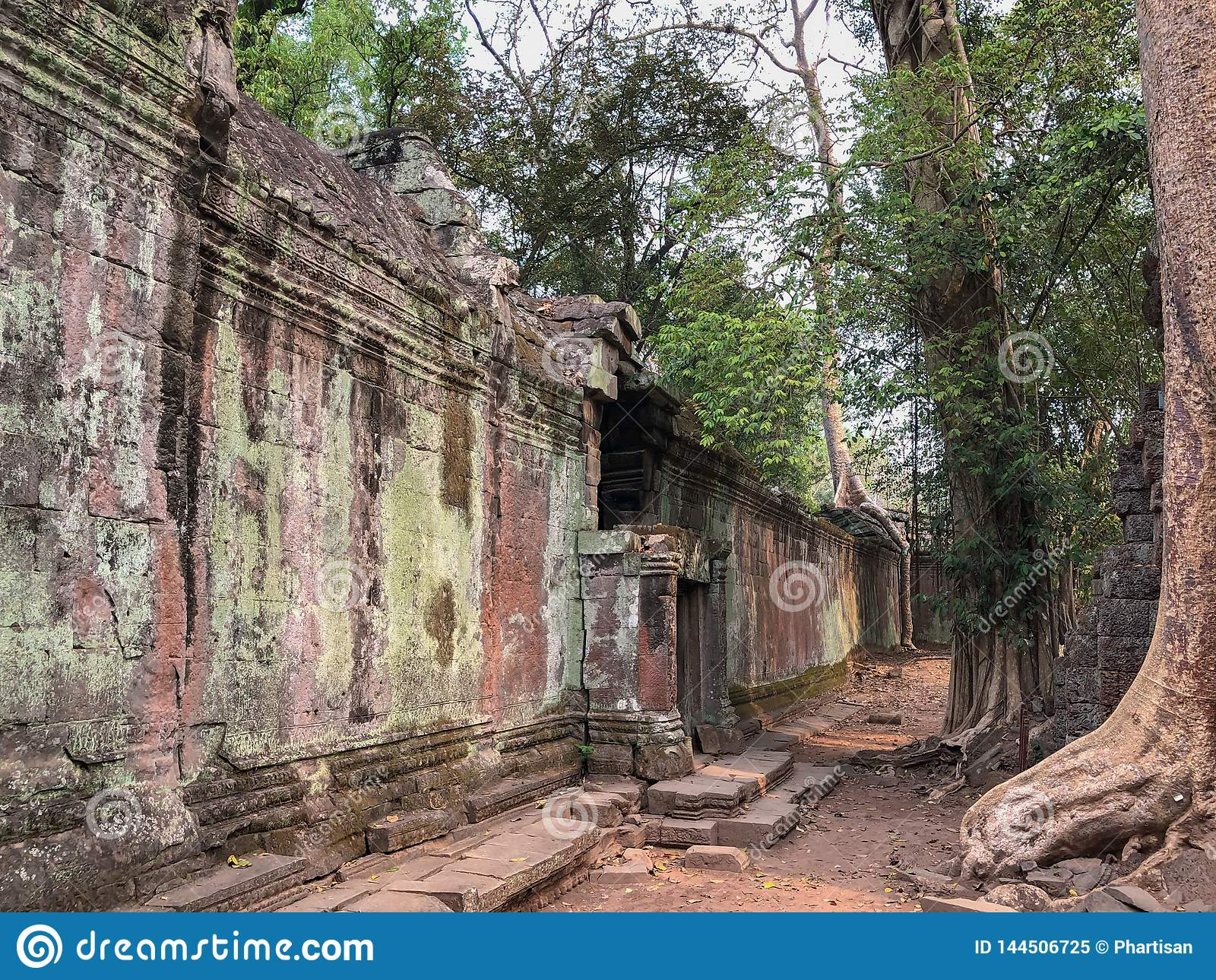Tempie di Angkor Cambogia