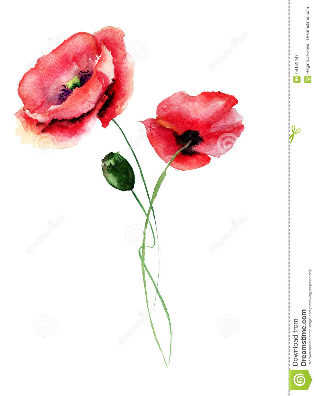 template for card with with poppy flower stock illustration