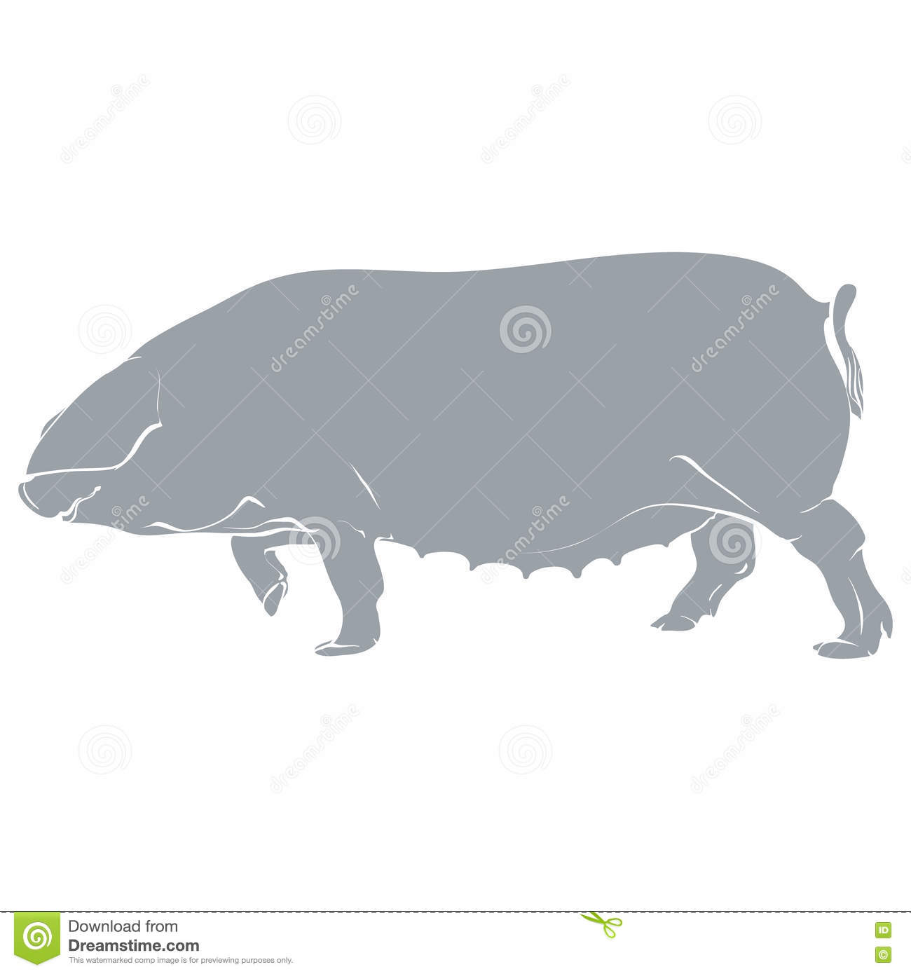 template pig gray stock vector illustration of piglet 81050343
