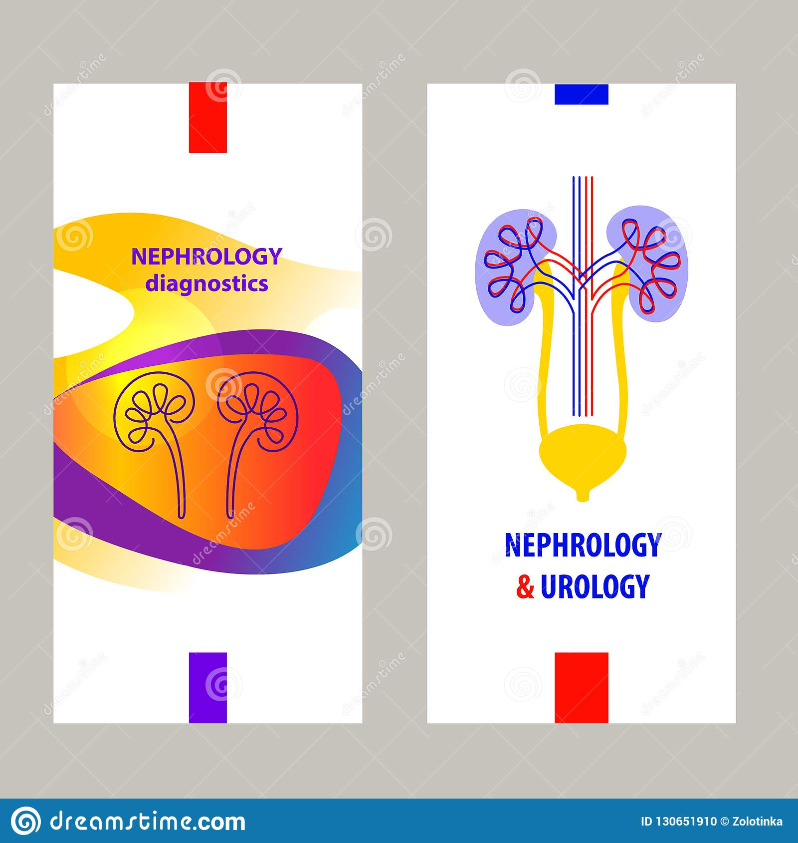 Template Simple Style Logo Banner Poster Flyer For Medical Clinic Cabinet Concept Diagnosis And Treatment Nephrology Urology Stock Illustration Illustration Of Internal Kidney 130651910
