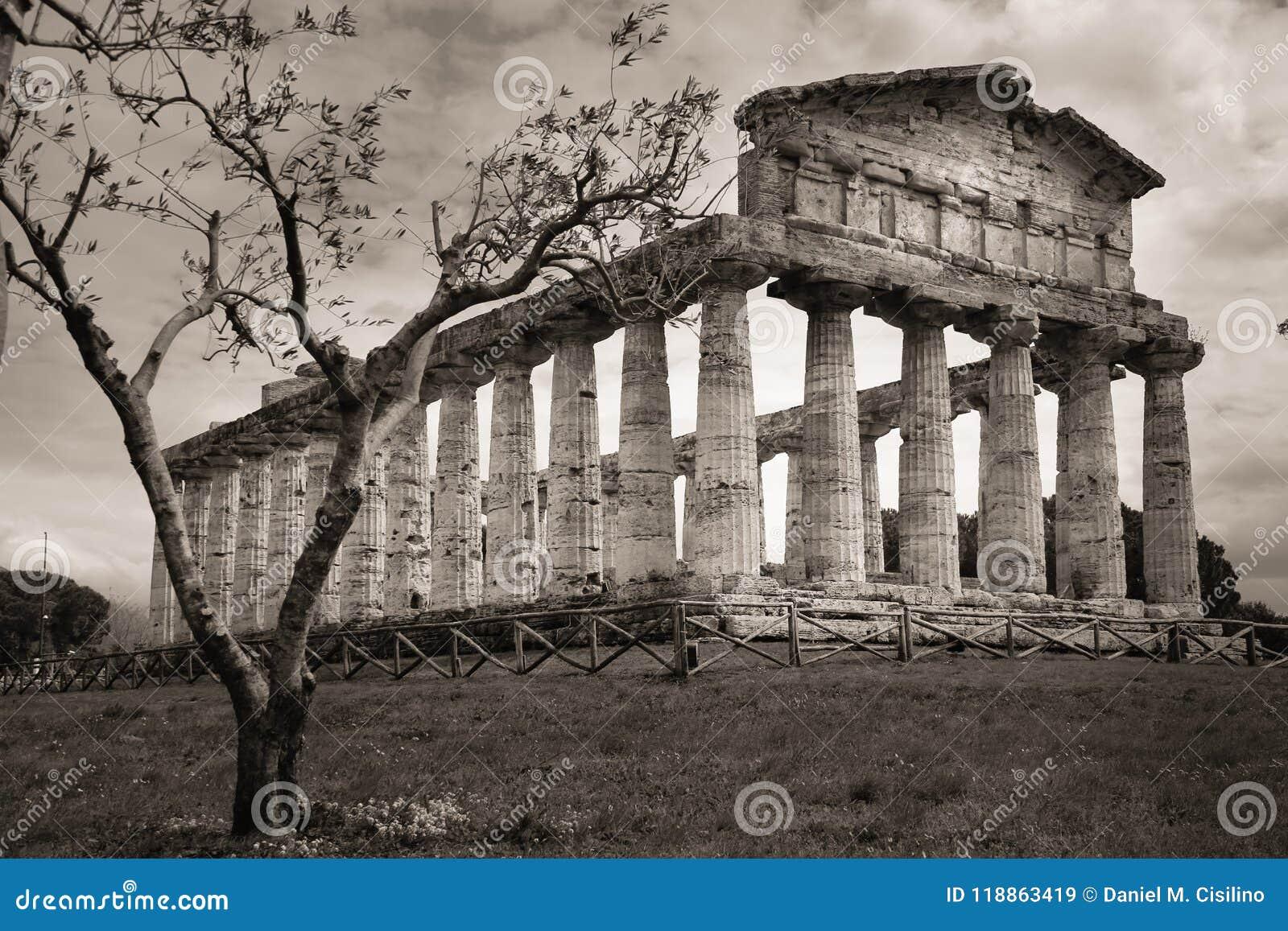 Temple d Athéna Paestum salerno Campanie l Italie