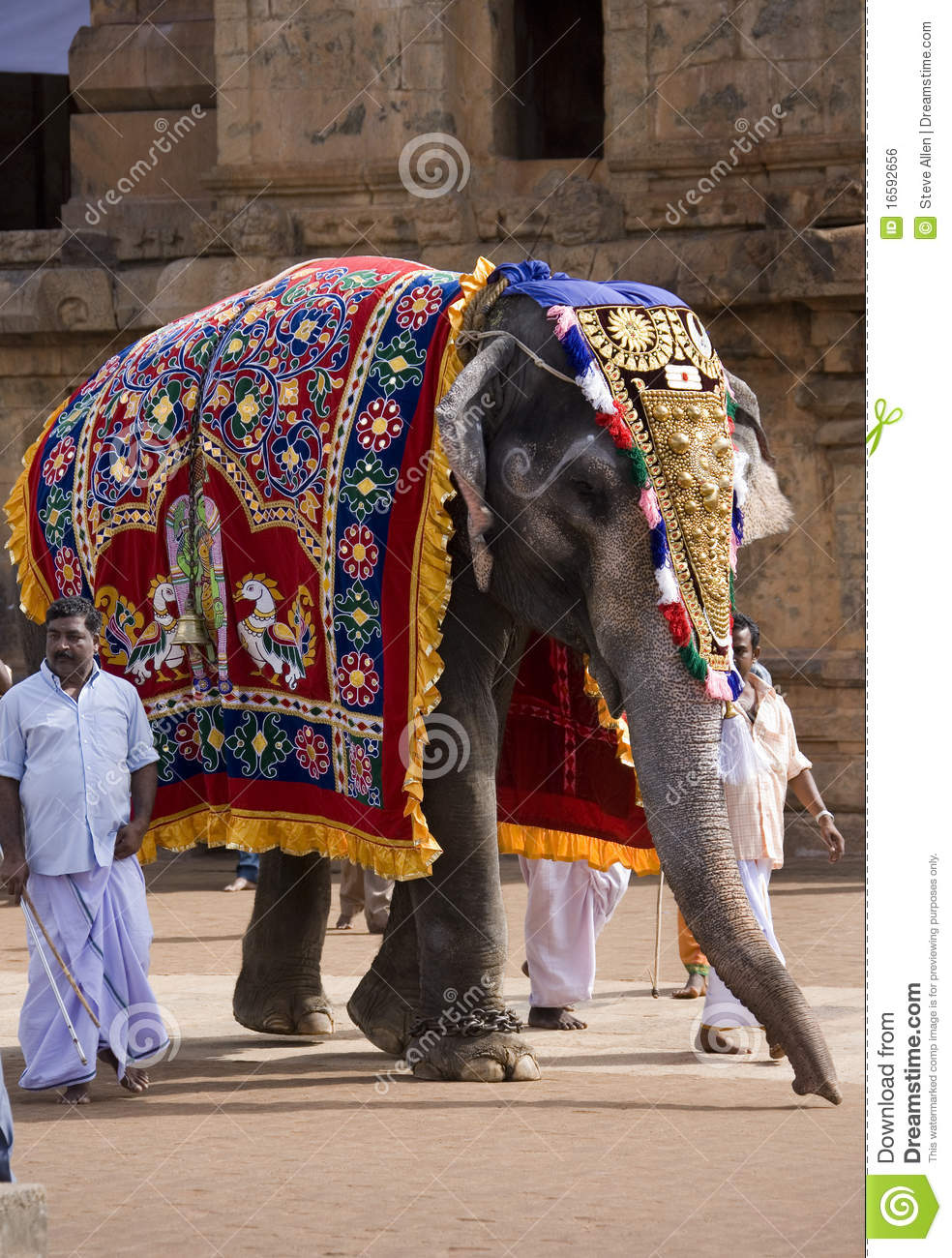 Temple Elephant - Thanjavur - Tamil Nadu - India
