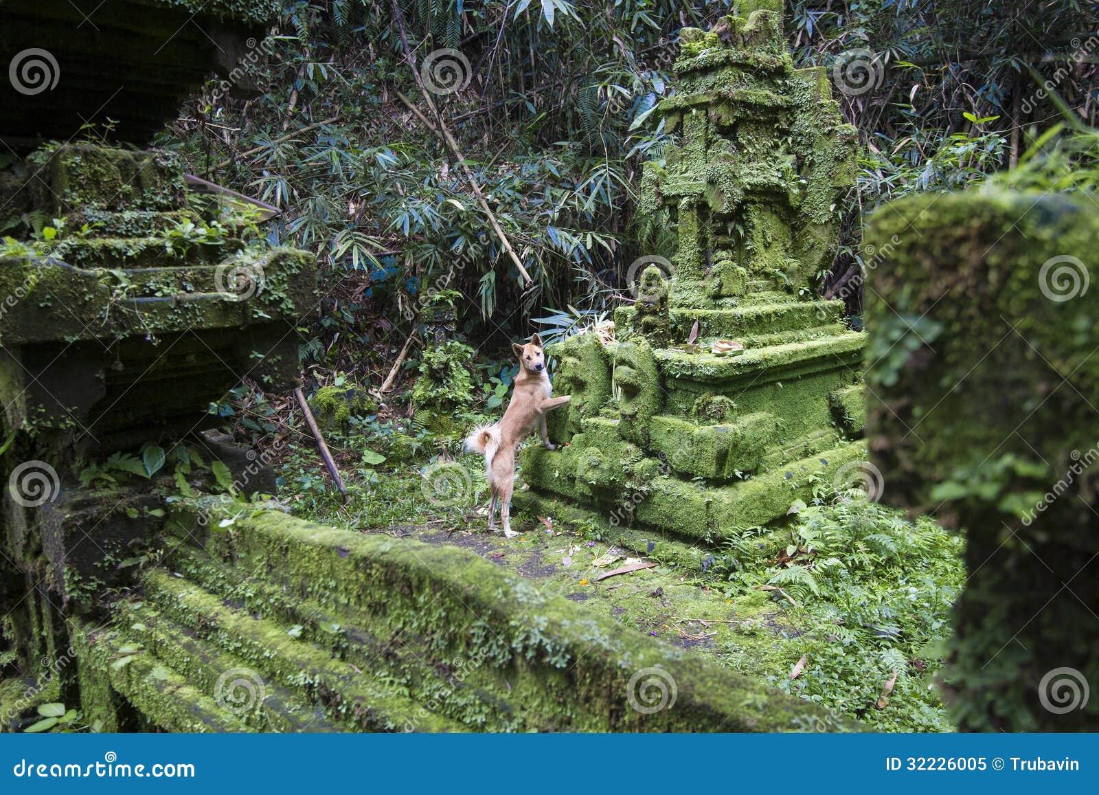 Download Templo do Balinese imagem de stock. Imagem de ásia, pedra - 32226005