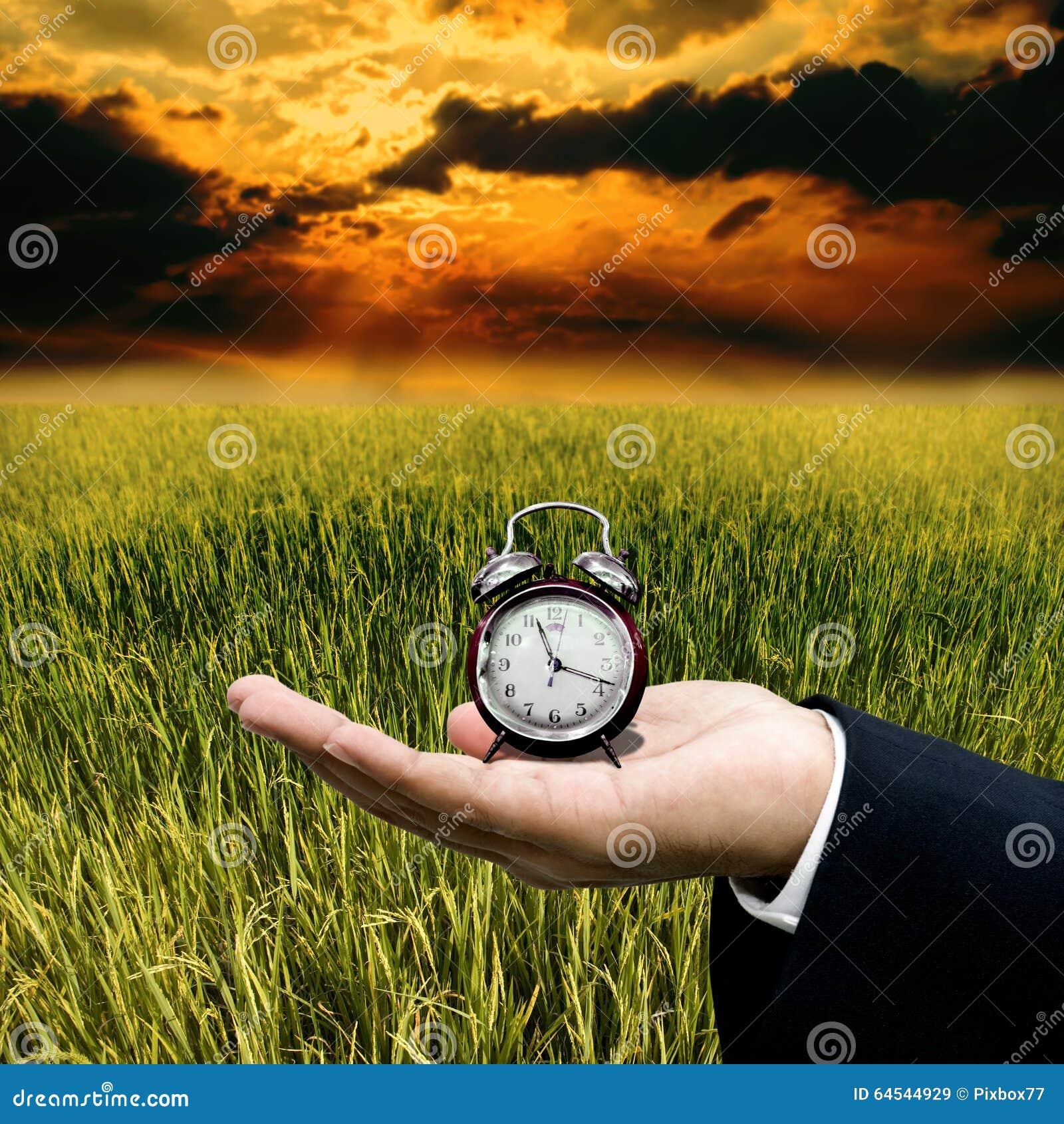 Tempo al lavoro con l azienda agricola