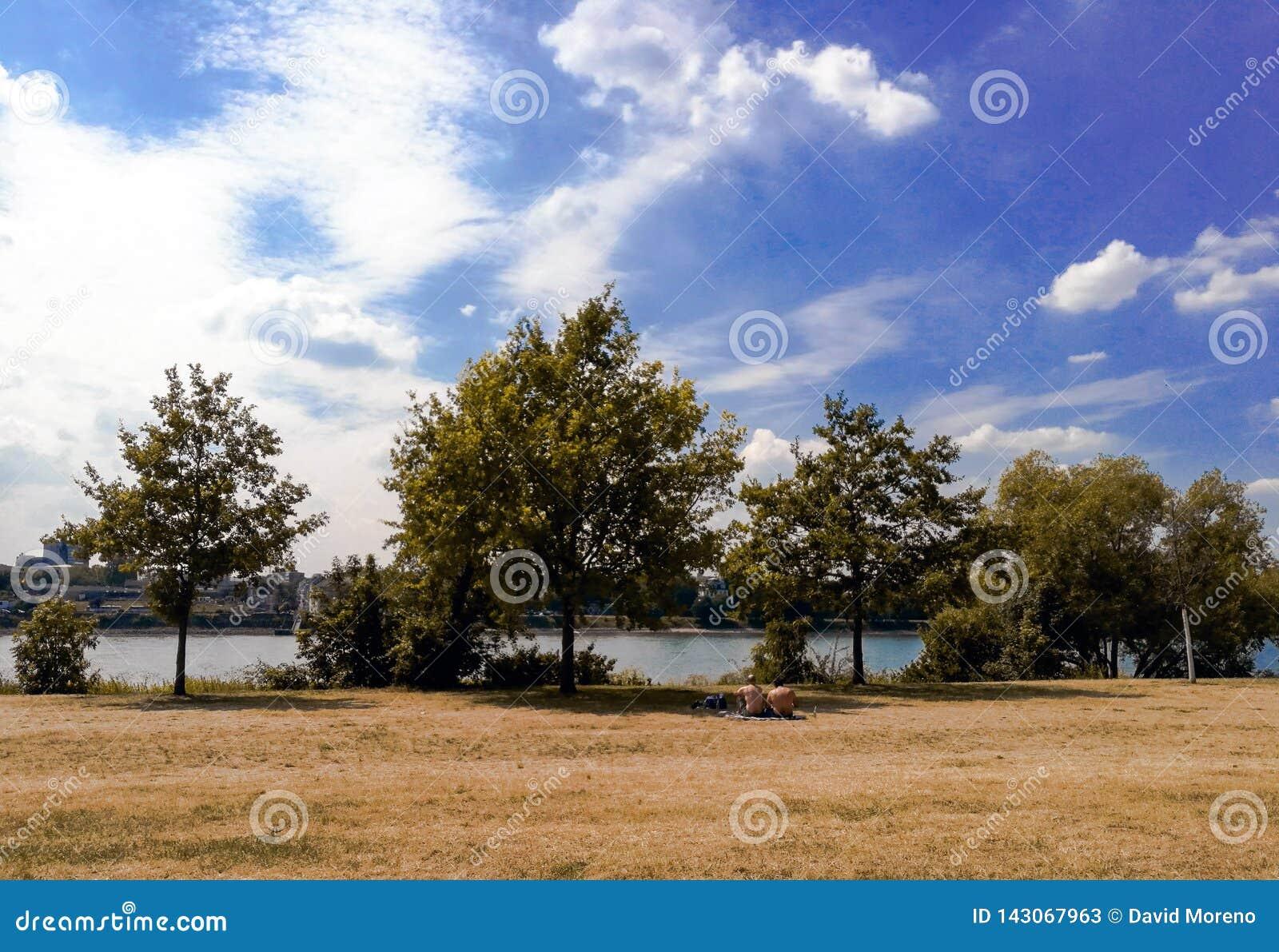 Tempo de gasto descamisado de um par dois homens junto no piquenique pelo Rhine River na cidade de Bona