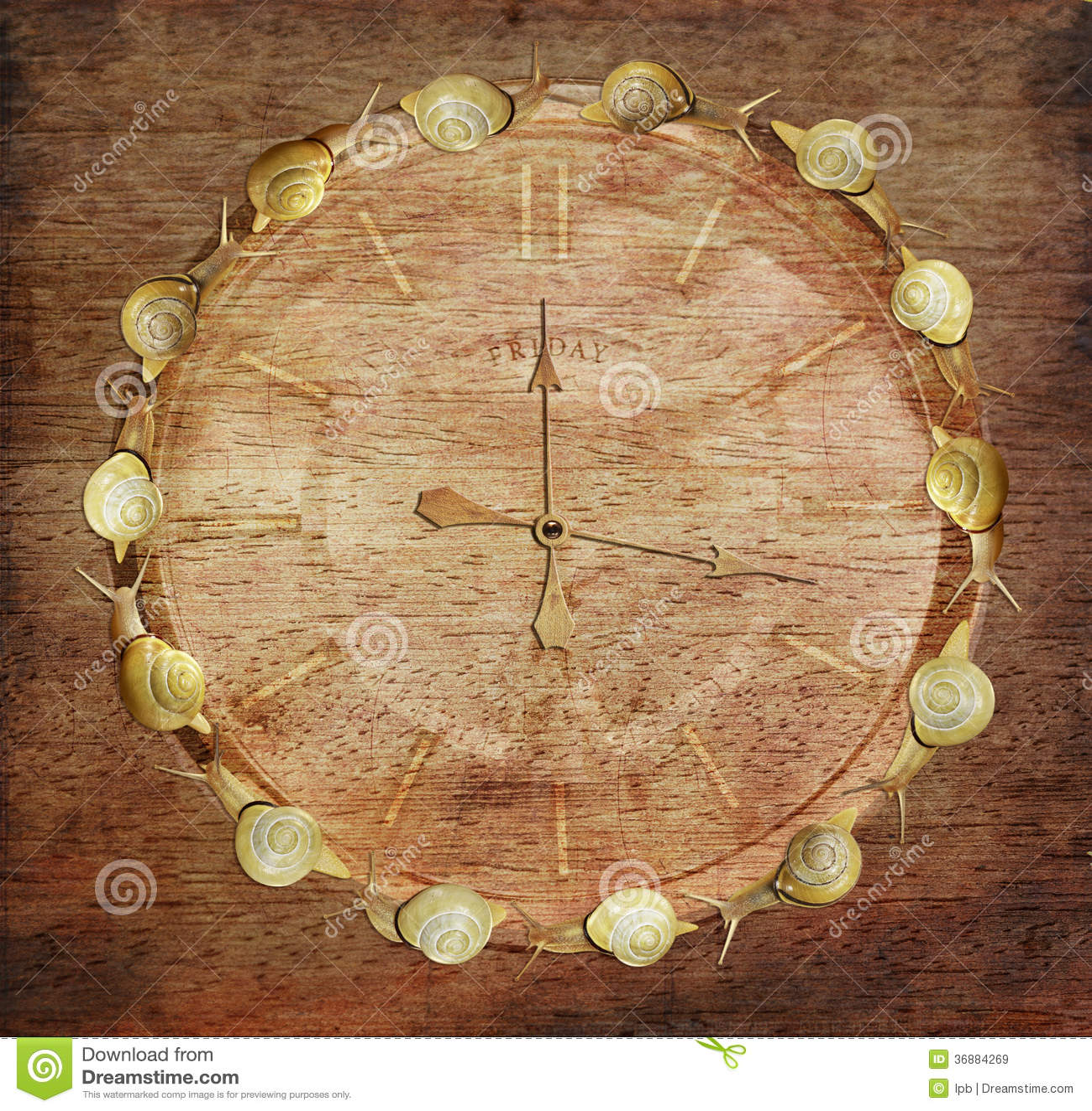 Download Tempo Lento. Retro Orologio Con Le Lumache Su Legno. Art Co Immagine Stock - Immagine di orologio, clockwork: 36884269