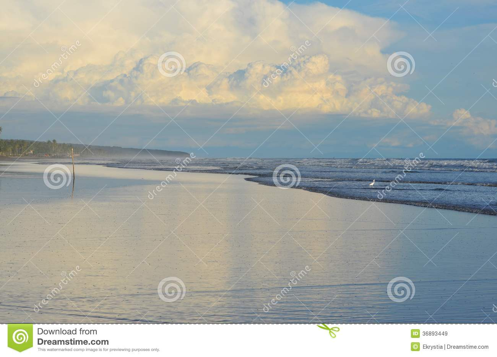 Download Tempo Pacifico Al EL Espino Di Playa Immagine Stock - Immagine di spiaggia, energia: 36893449
