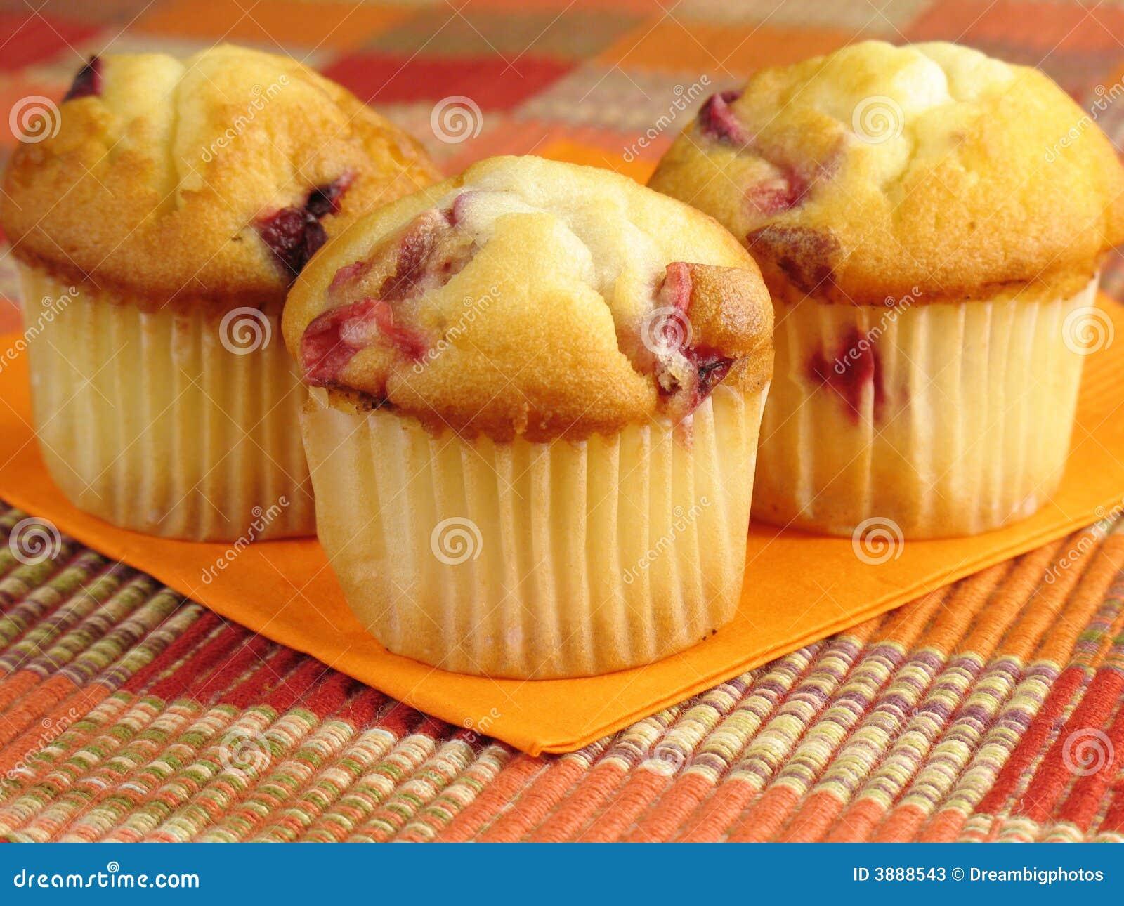 Tempting Cranberry Orange Muffins