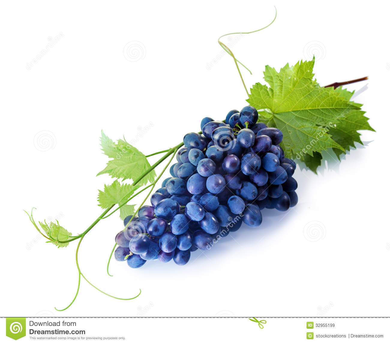 Tempting Fresh Purple Table Grapes Royalty Free Stock