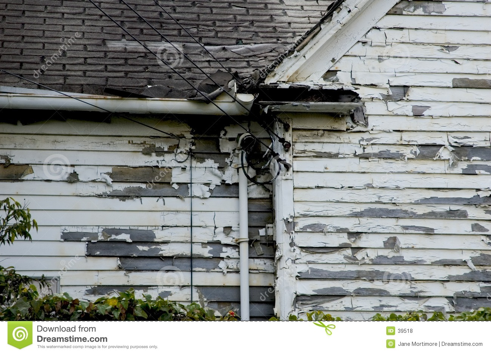 Ten Stary Dom