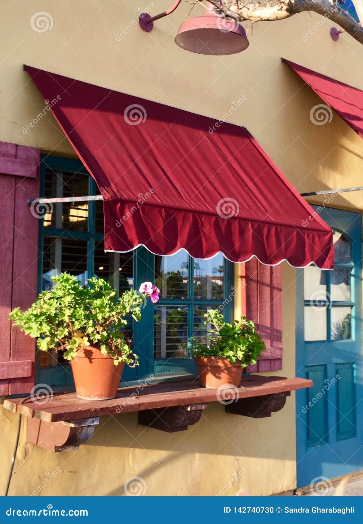 Tenda e vasi da fiori della finestra