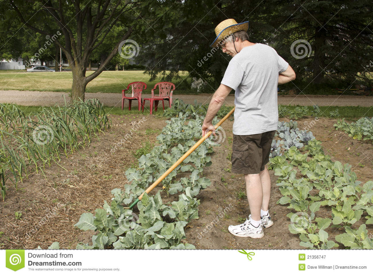 Tending the garden royalty free stock photography image 21356747 for Tending to the garden