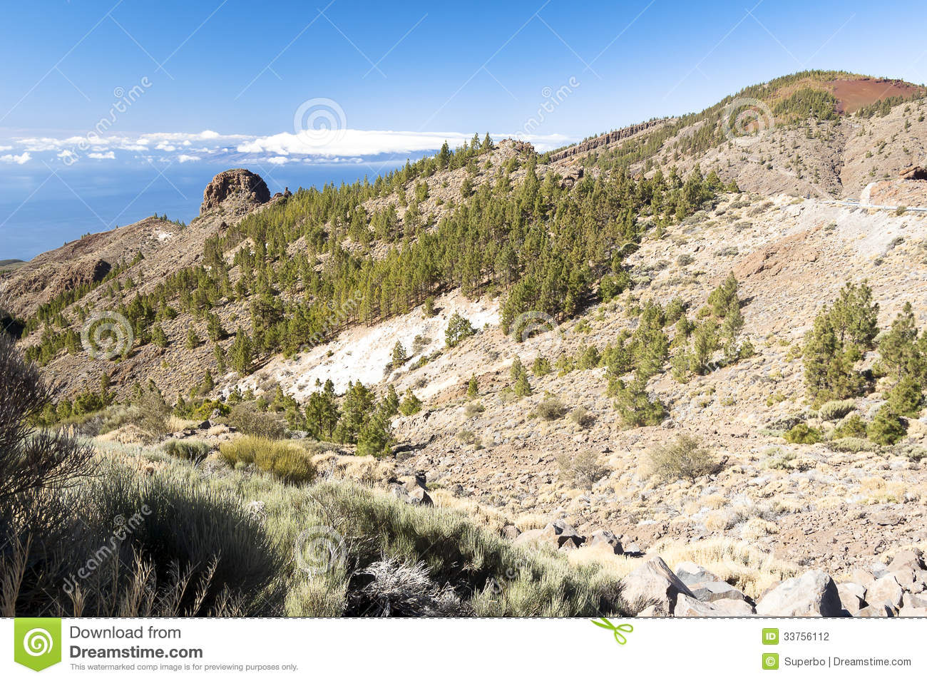 Tenerife Spain  city photos gallery : Tenerife Spain Stock Photography Image: 33756112