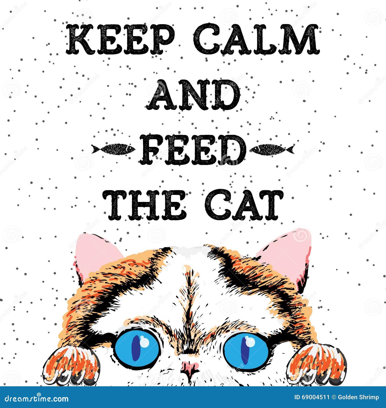 Tenga la calma ed alimenti il gatto