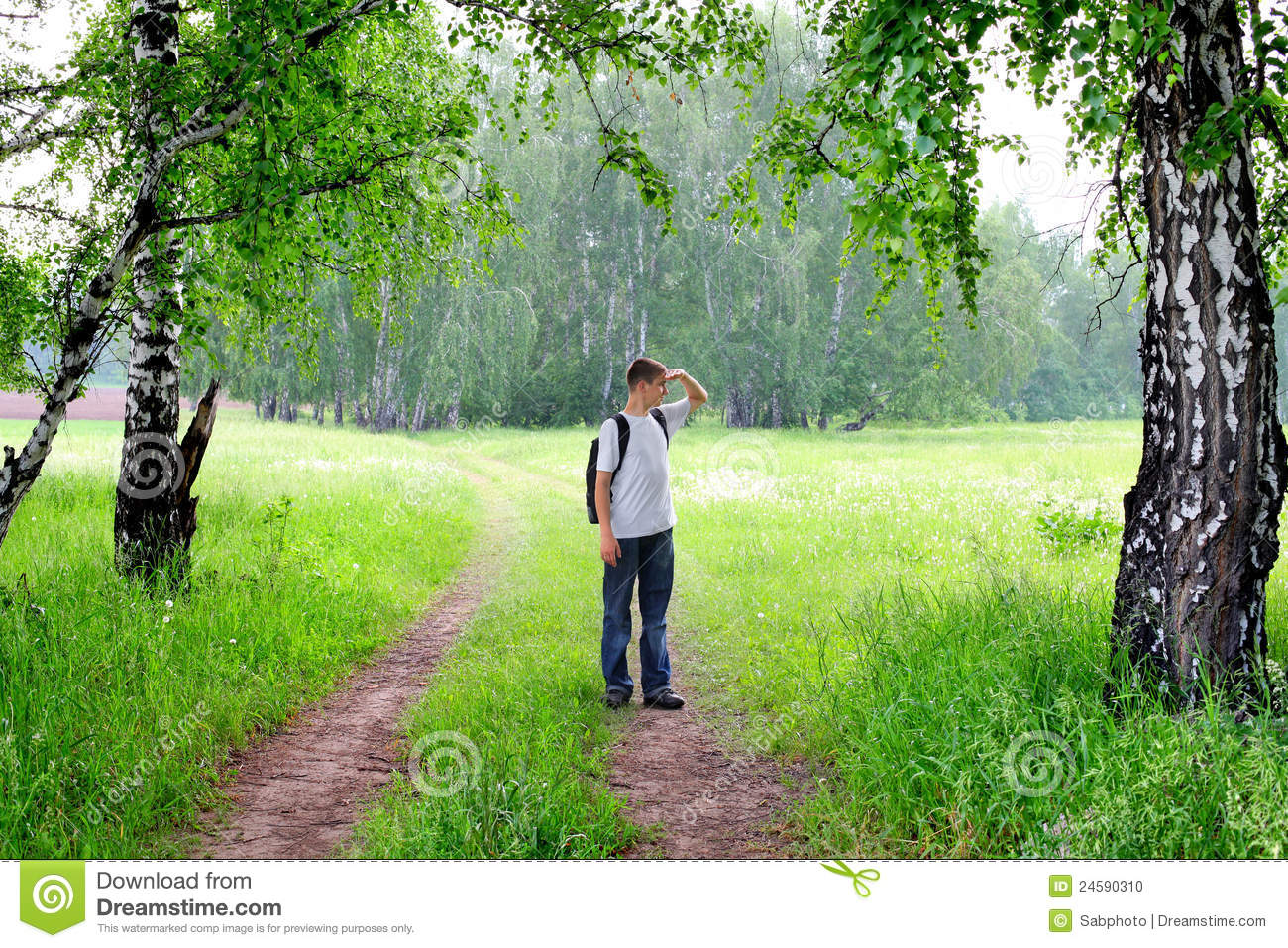 Download Tennager in the forest stock photo. Image of green, pedestrian - 24590310