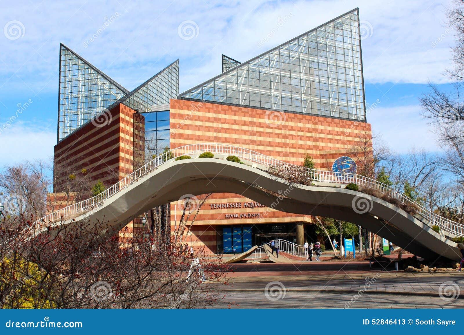 Image Gallery Tennessee Aquarium