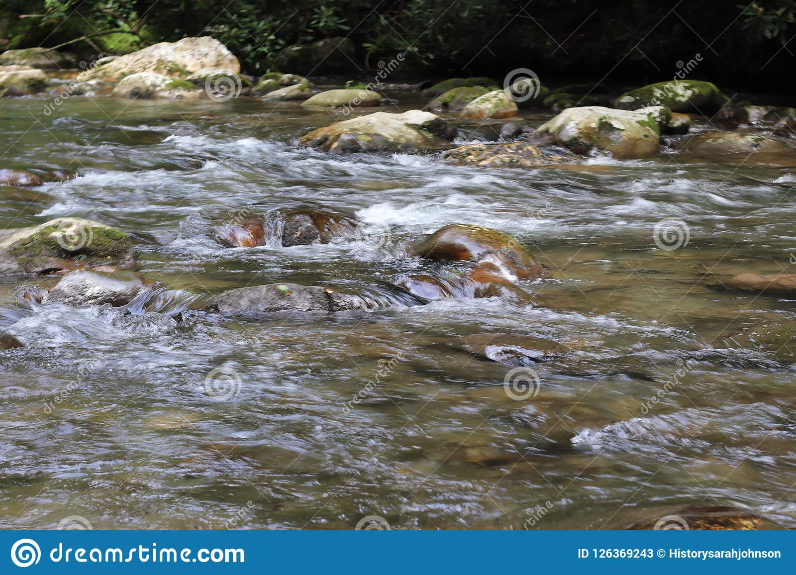Tennessee Smoky Mountain Streams des Sommers