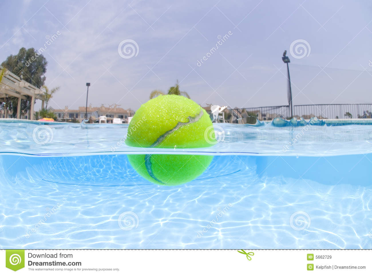Tennis Ball Floating In Pool Stock Image Image Of Recreation Surface 5662729