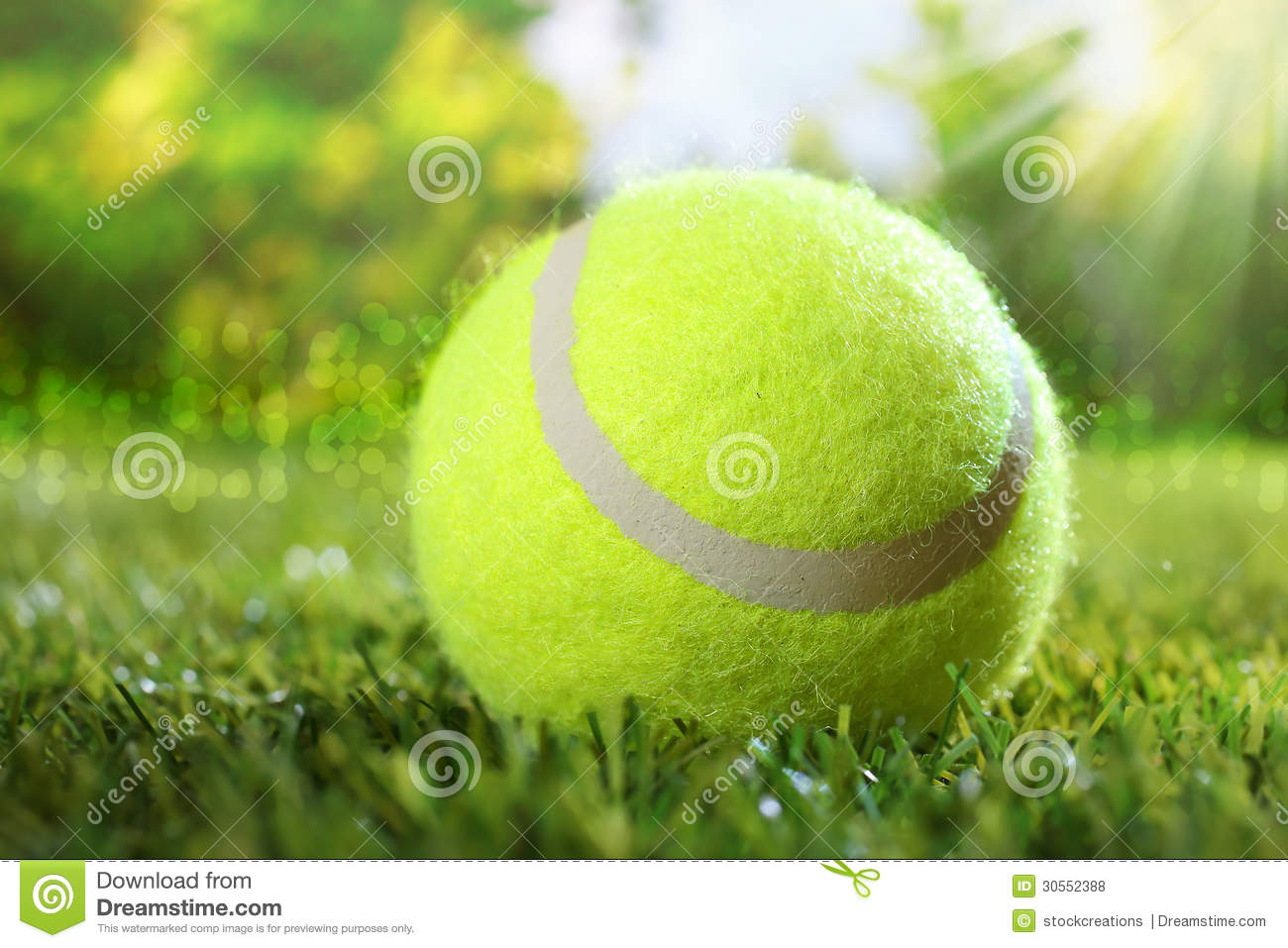 Tennis ball on green grass royalty free stock photos image 30552388