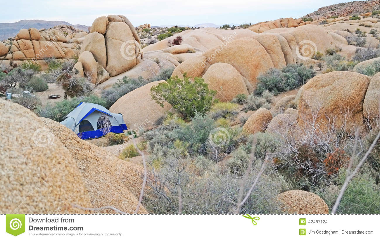 Tent Camping In Joshua Tree National Park - Panorama Stock Photo ...
