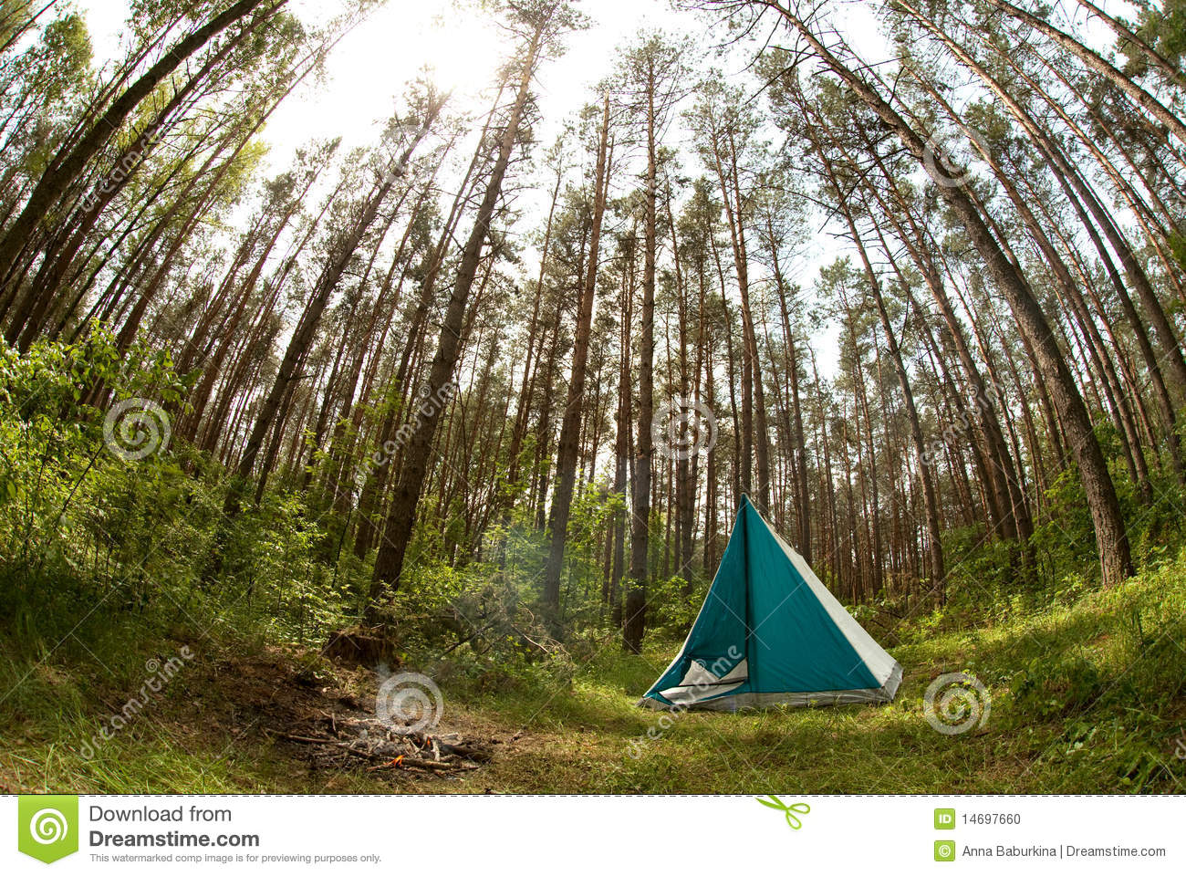 Tent in forest & Tent in forest stock photo. Image of wild nature life - 14697660