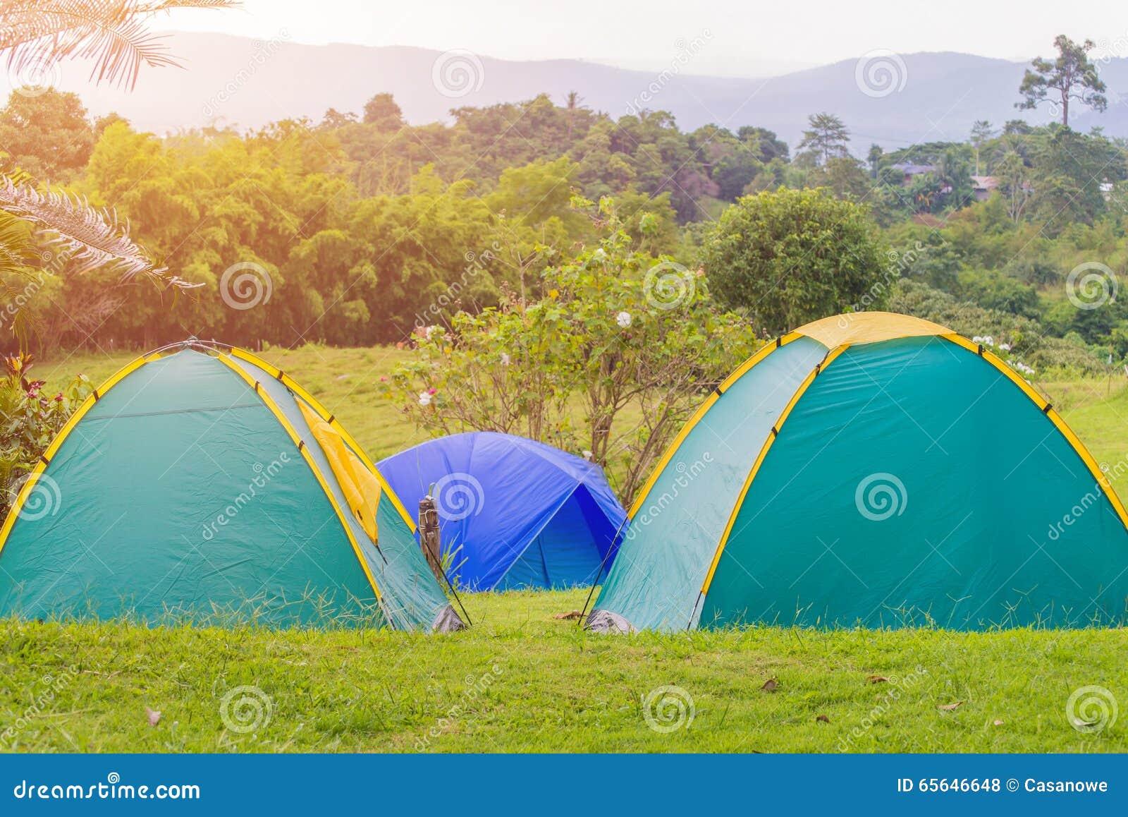 Tente de camping dans le terrain de camping au parc national
