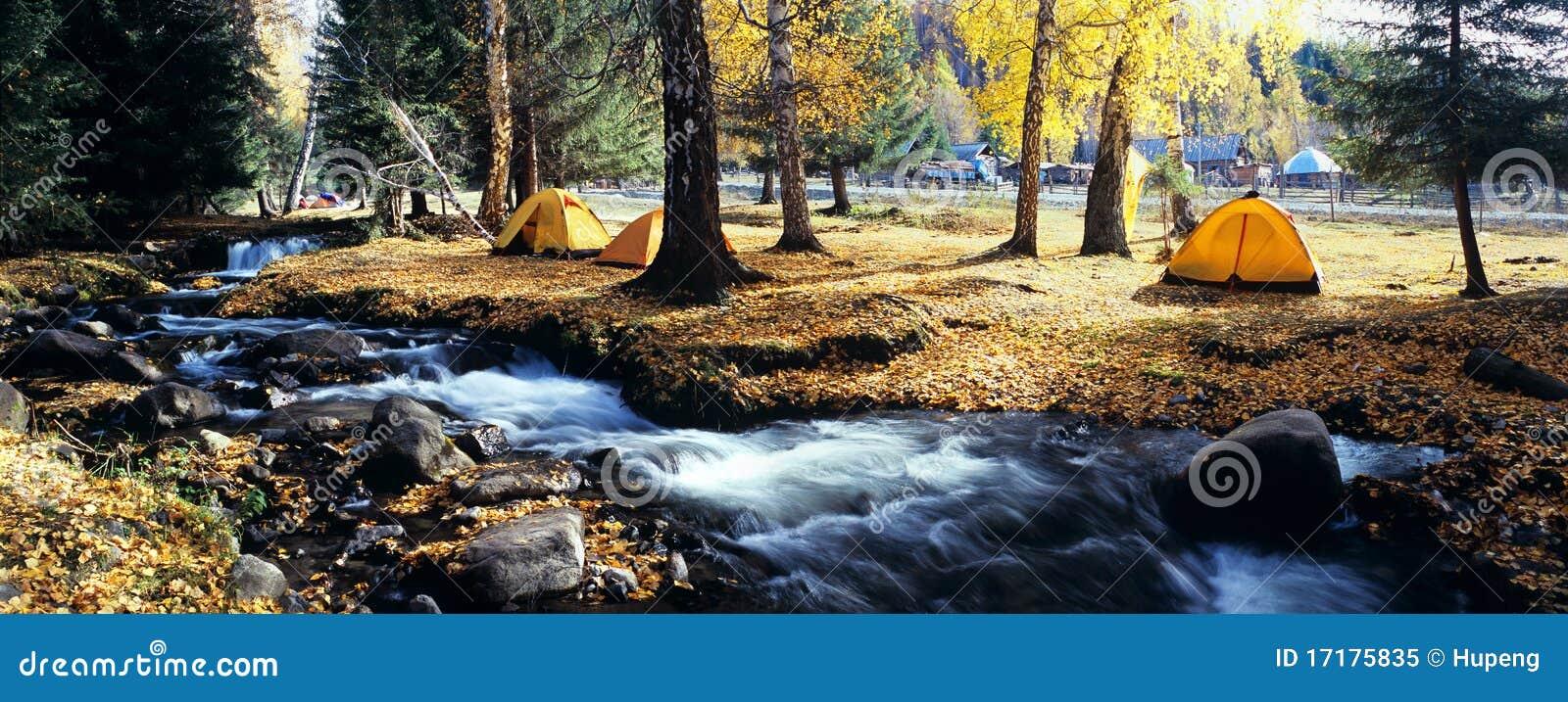Tente jaune dans la forêt d automne