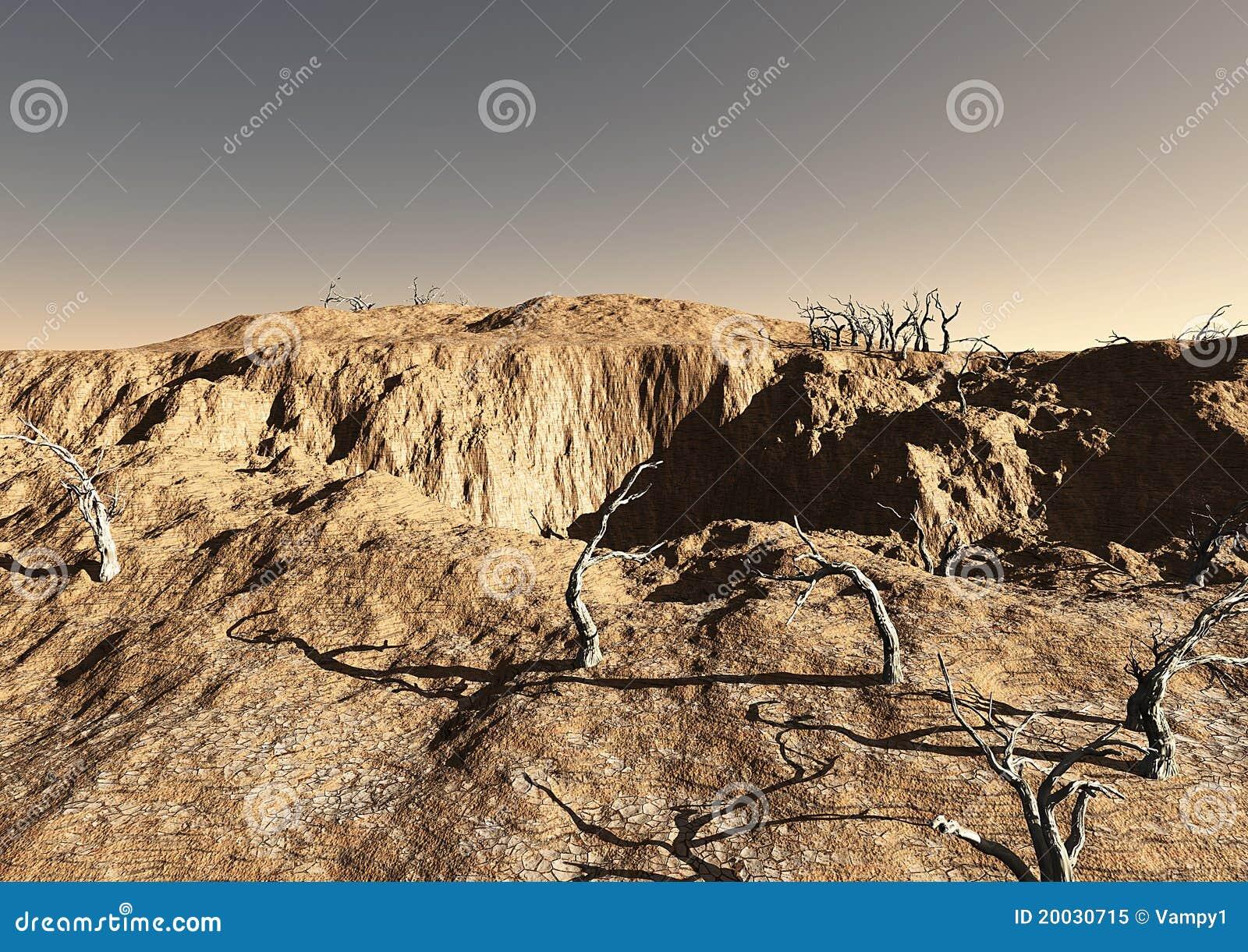 Terenów nieżywi pustynni drzewa