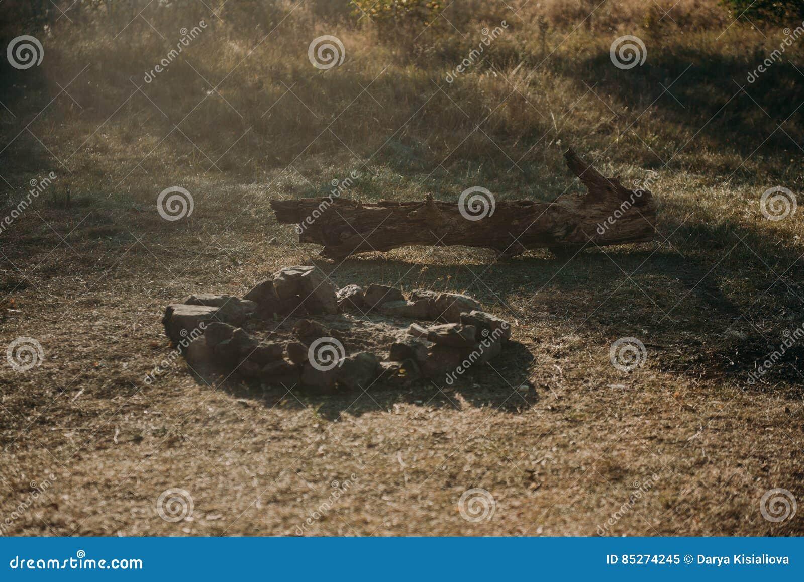 Teren Dla Grilla Na Zielonej Trawie Ogrodowa łąka Drewniane Handmade