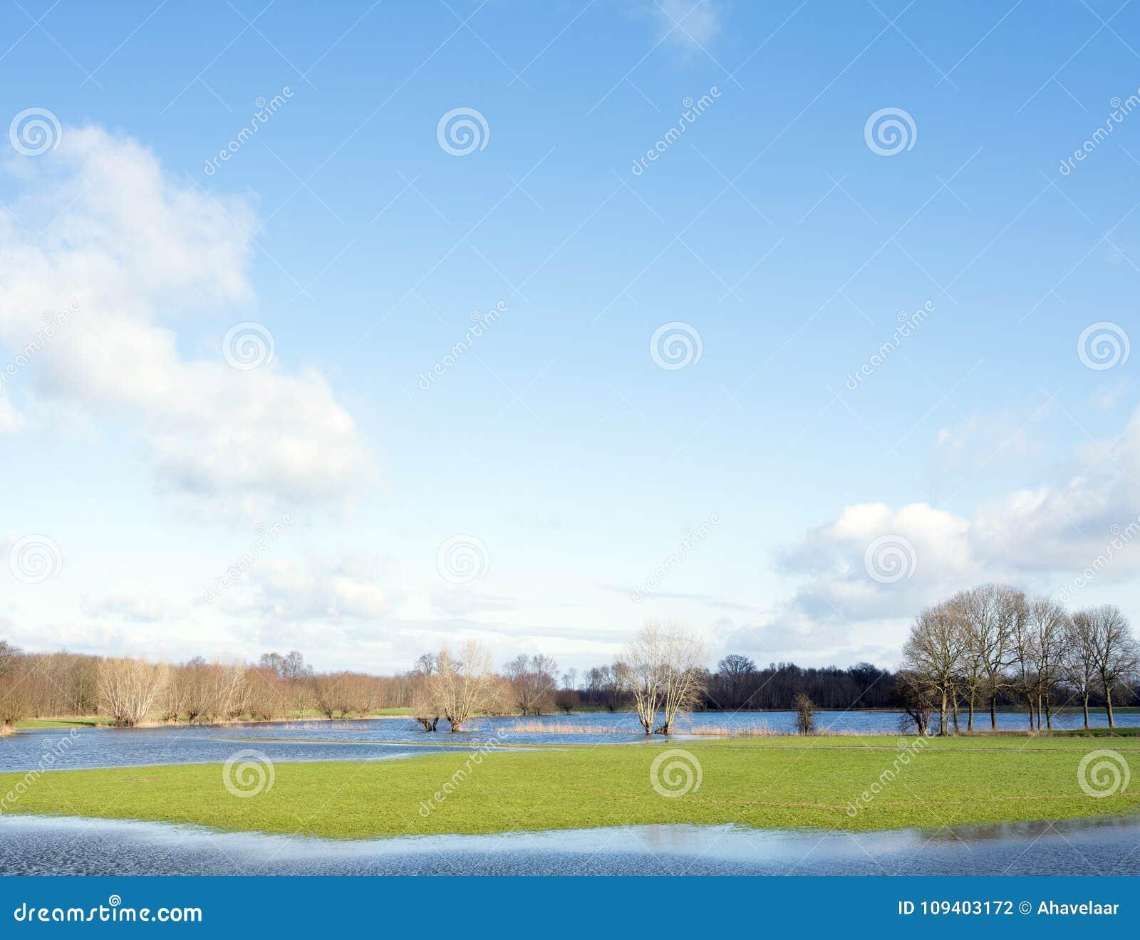Tereny zalewowy rzeczny ijssel blisko Zalk między Kampen i Zwolle w holandiach