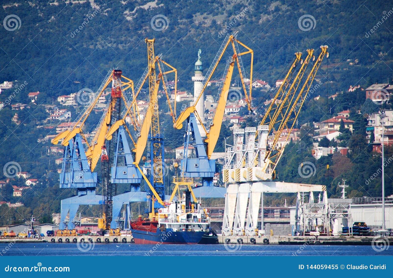Terminal av Trieste och kranar i porten, Italien