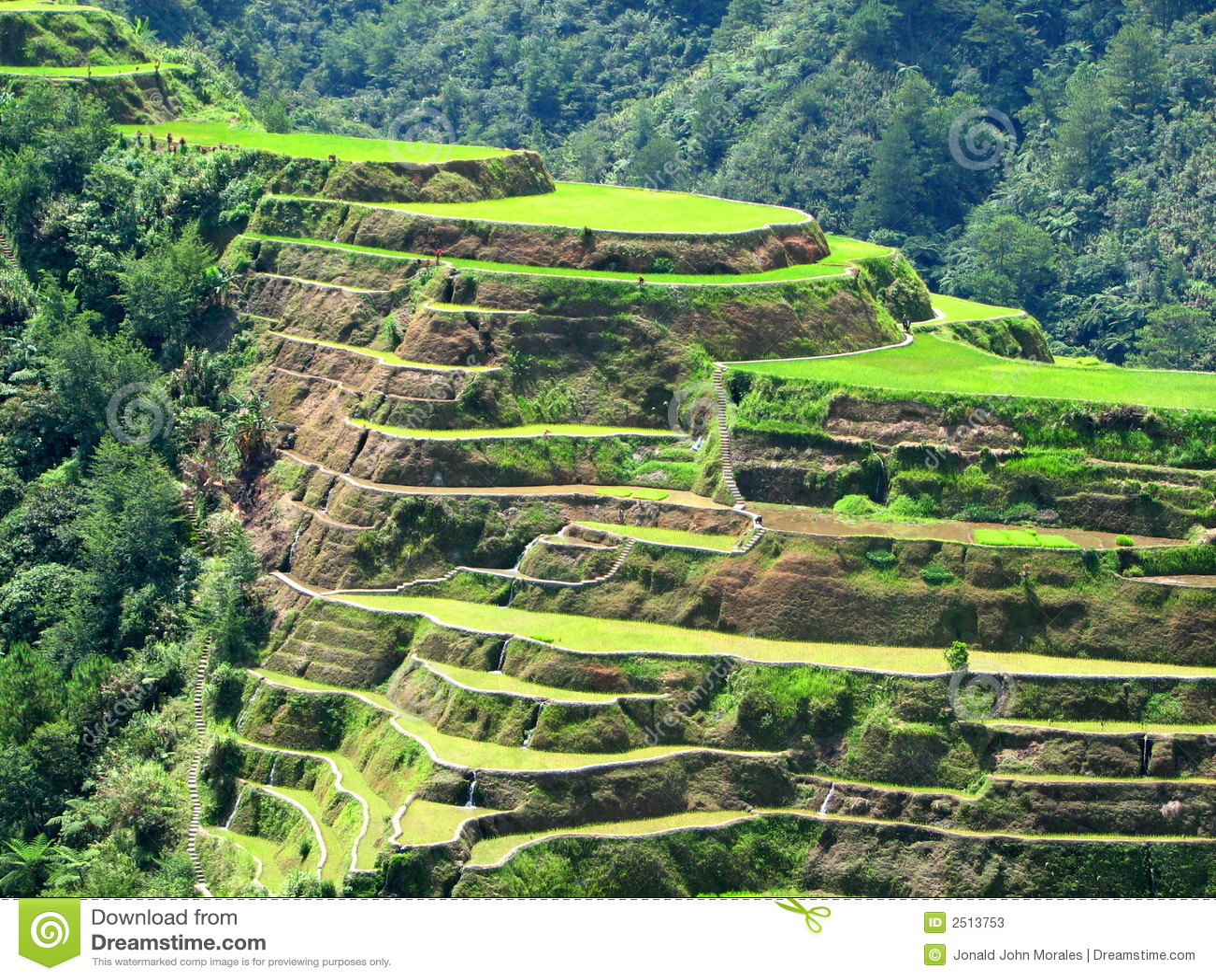 Terraços 2 do arroz de Banaue