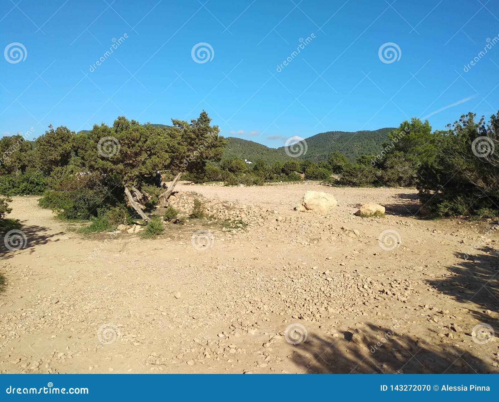 Terra arida e sterile nella retroterra di ibiza il clima secco lascia la terra ha scoperto, la terra è asciutto intorno alle mont