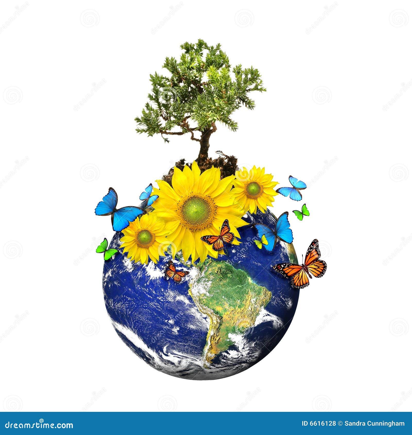 Terra con un albero e fiori sopra un bianco illustrazione for Albero con fiori blu