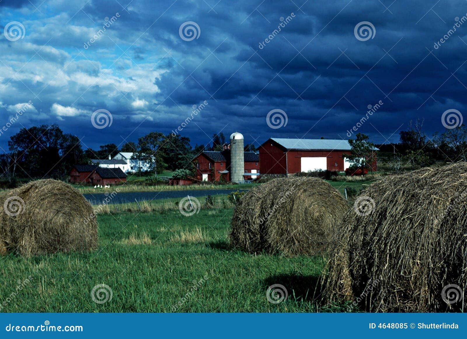 Terra de exploração agrícola