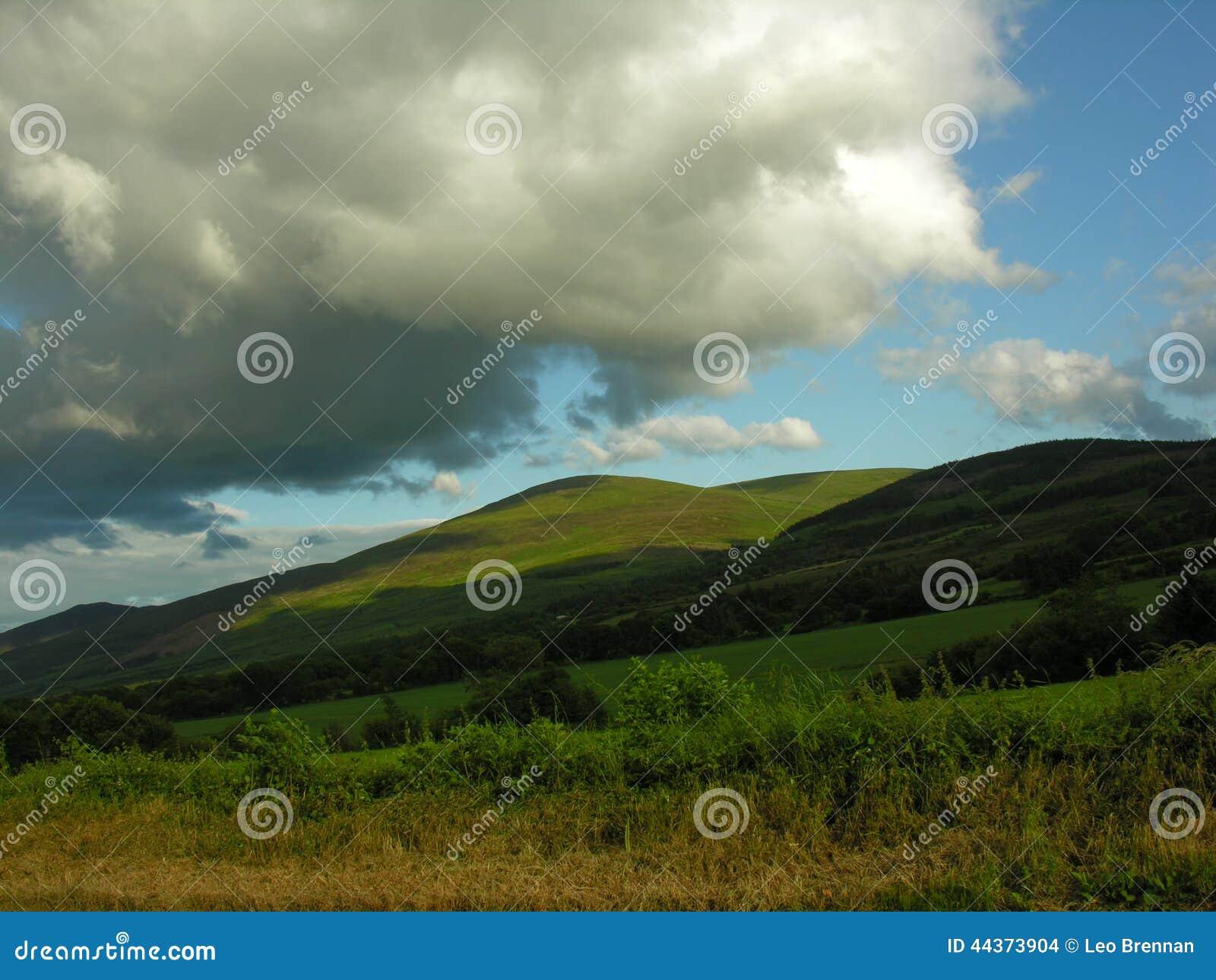 Terra dell azienda agricola della montagna in Irlanda