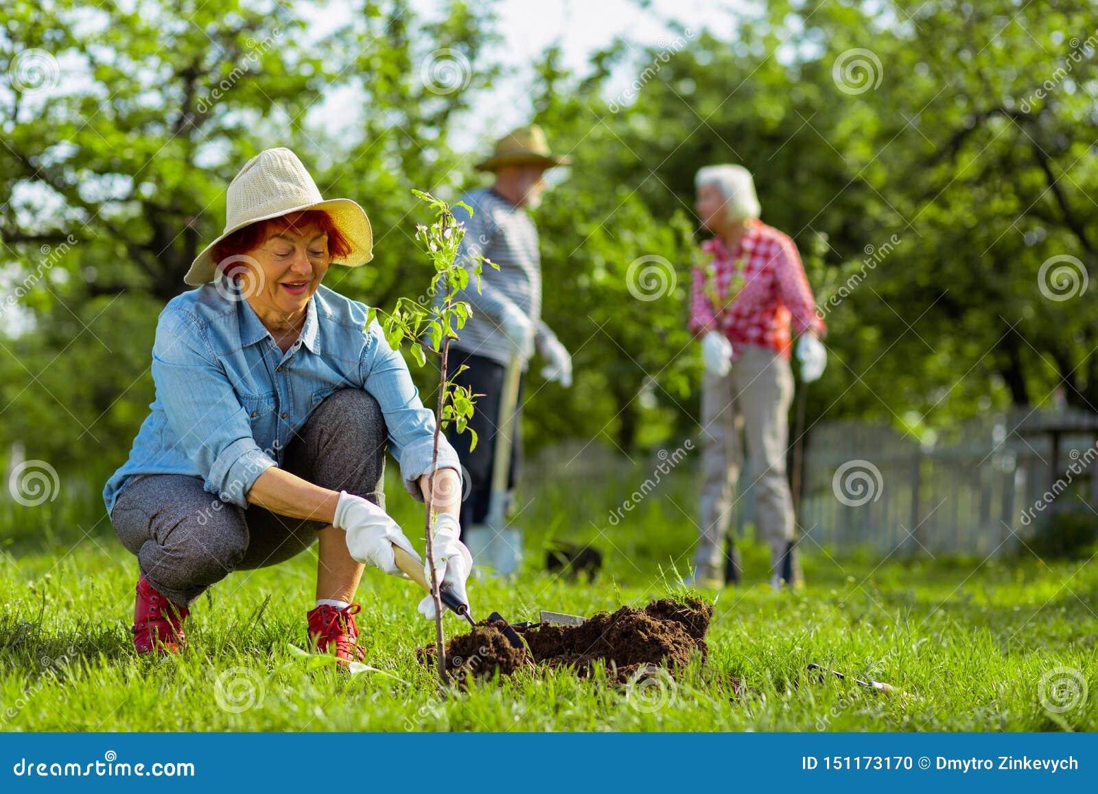Terra di scavatura d uso pensionata sveglia del cappello della donna vicino all albero
