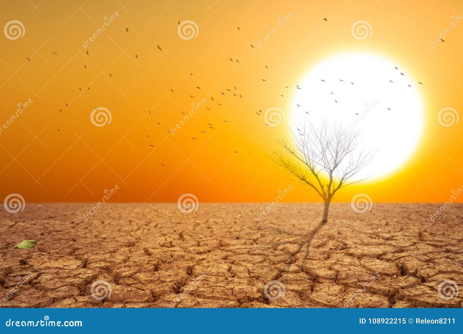 Terra seca e ar seco quente