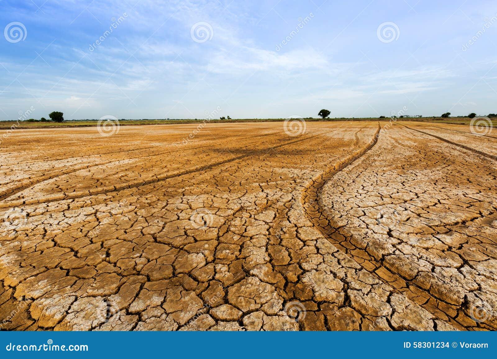 Terra rachada Banco de Imagens e Fotos 13854 terra